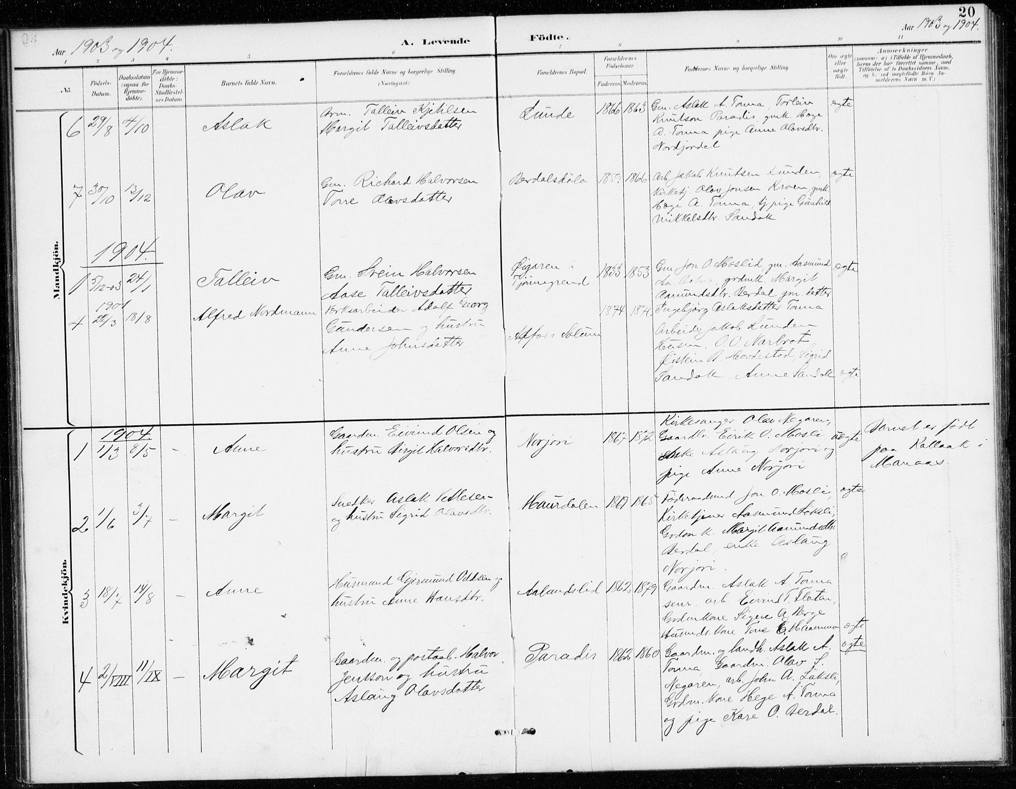 SAKO, Vinje kirkebøker, G/Gb/L0003: Klokkerbok nr. II 3, 1892-1943, s. 20