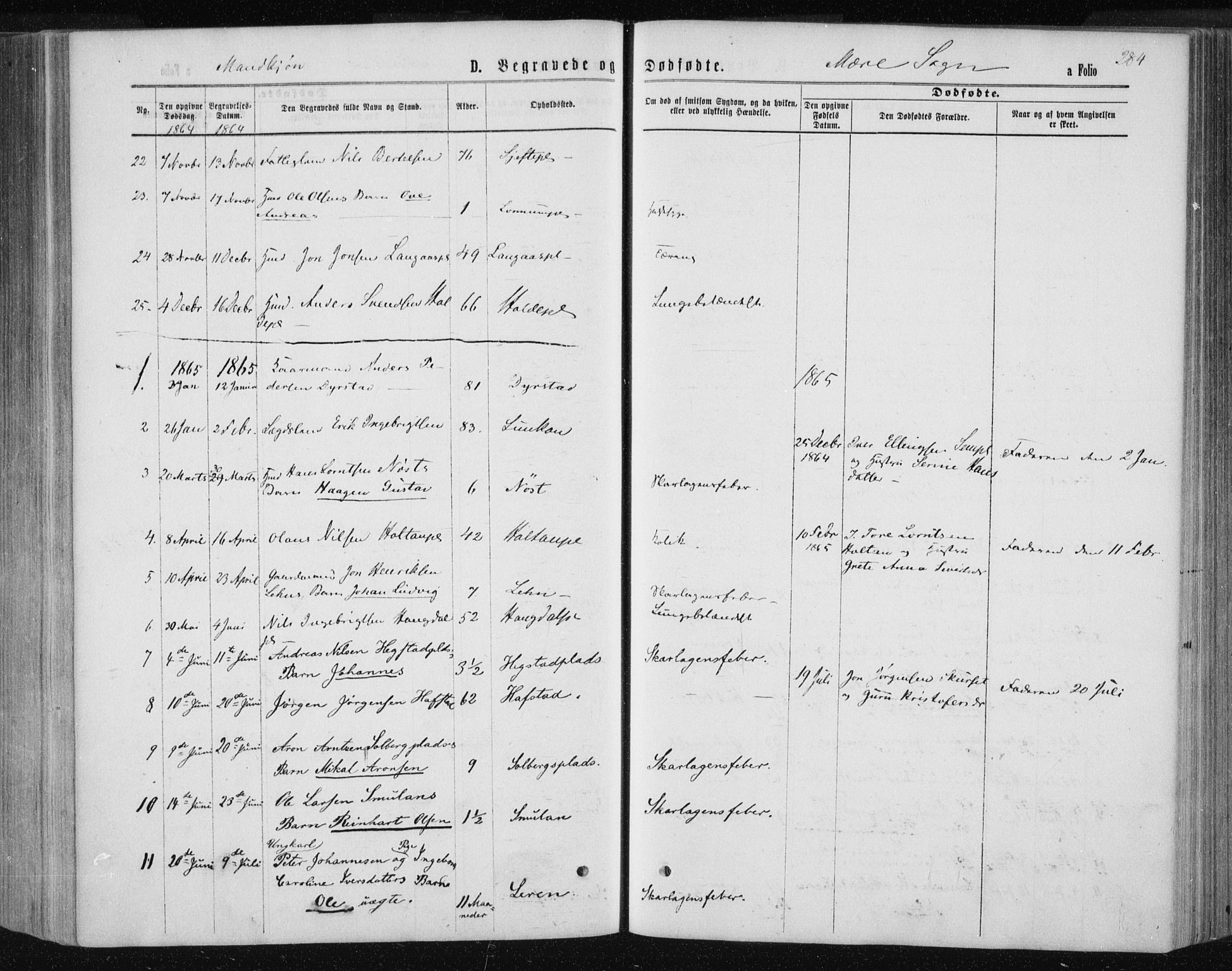 SAT, Ministerialprotokoller, klokkerbøker og fødselsregistre - Nord-Trøndelag, 735/L0345: Ministerialbok nr. 735A08 /1, 1863-1872, s. 284