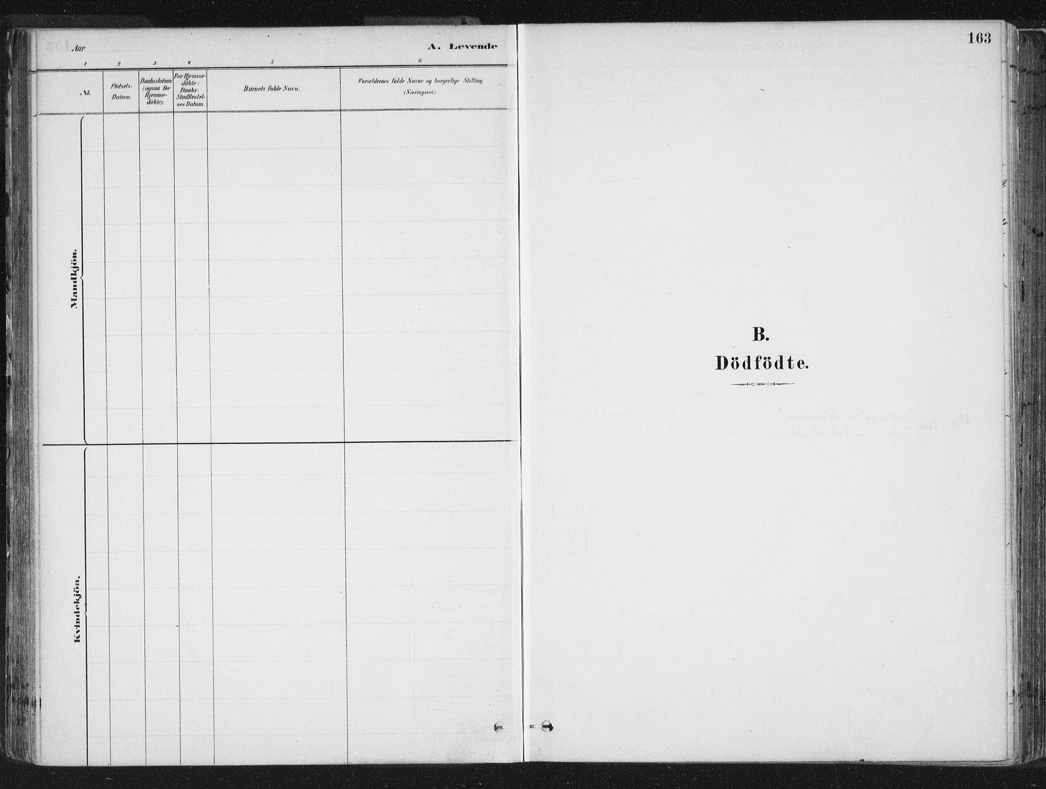 SAT, Ministerialprotokoller, klokkerbøker og fødselsregistre - Sør-Trøndelag, 659/L0739: Ministerialbok nr. 659A09, 1879-1893, s. 163