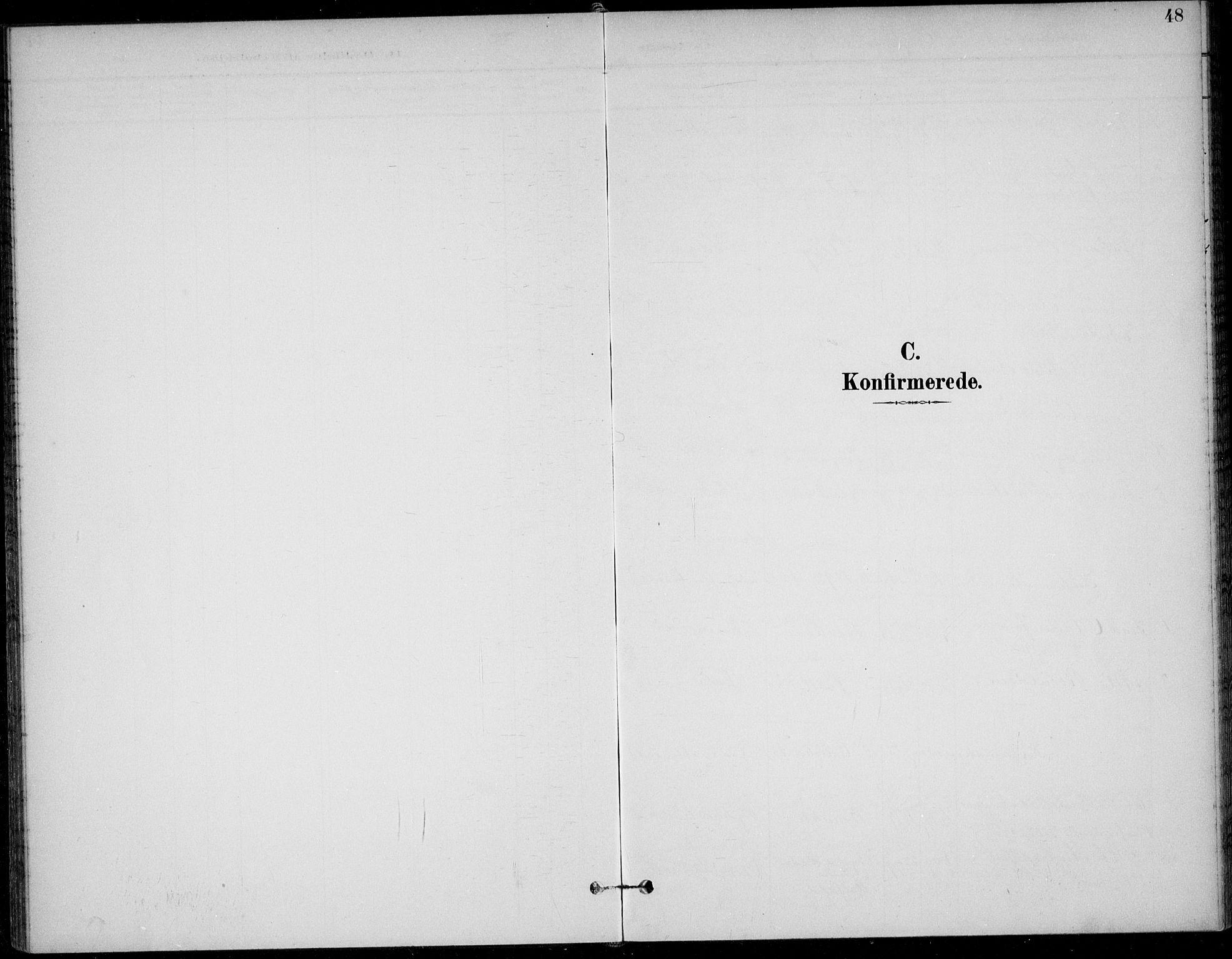 SAKO, Solum kirkebøker, F/Fc/L0002: Ministerialbok nr. III 2, 1892-1906, s. 48