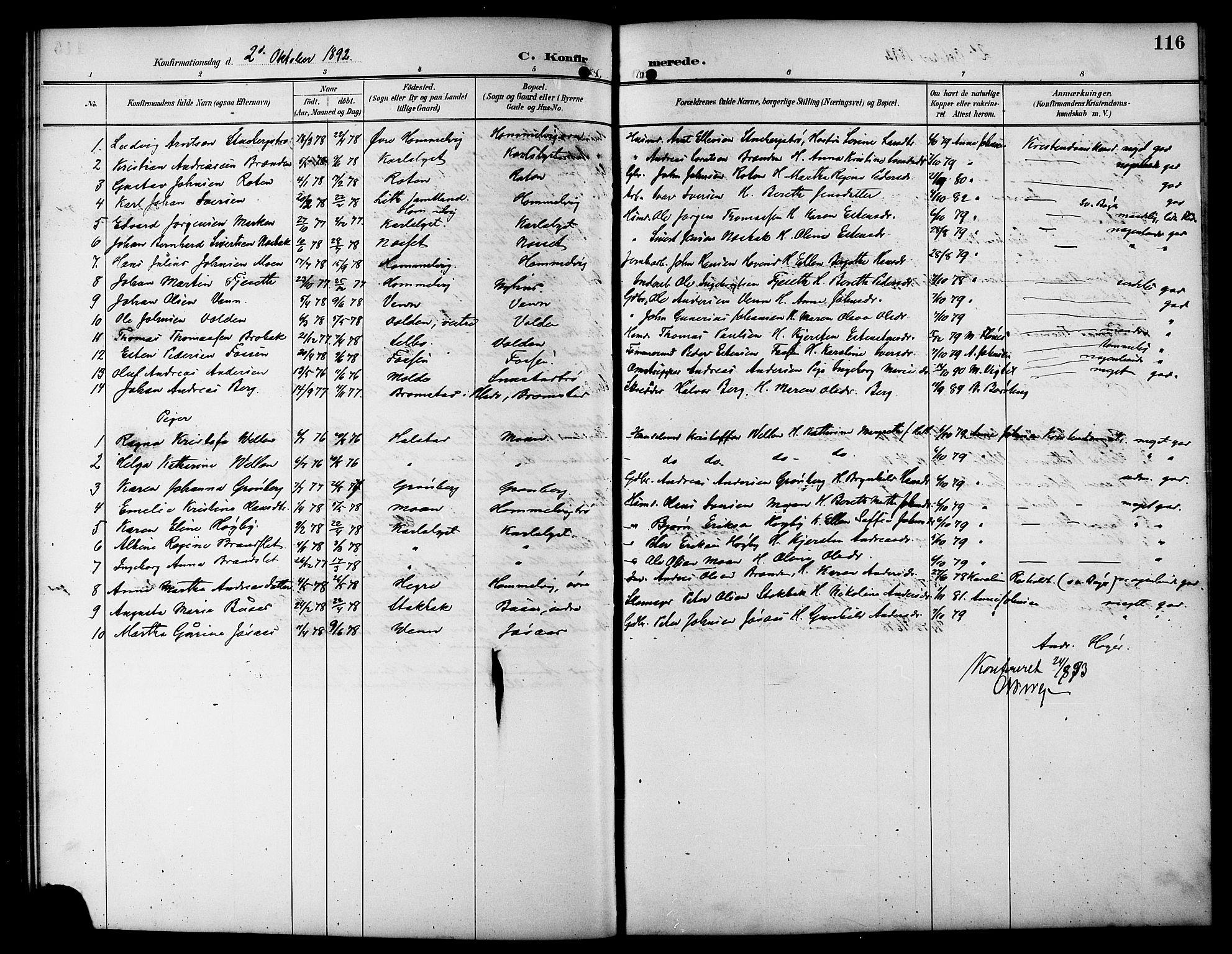 SAT, Ministerialprotokoller, klokkerbøker og fødselsregistre - Sør-Trøndelag, 617/L0431: Klokkerbok nr. 617C01, 1889-1910, s. 116