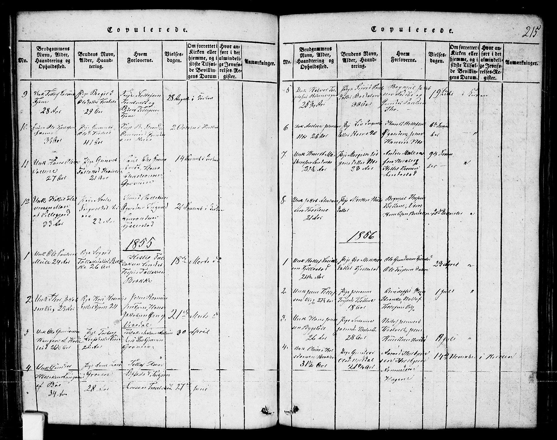 SAKO, Nissedal kirkebøker, G/Ga/L0001: Klokkerbok nr. I 1, 1814-1860, s. 215