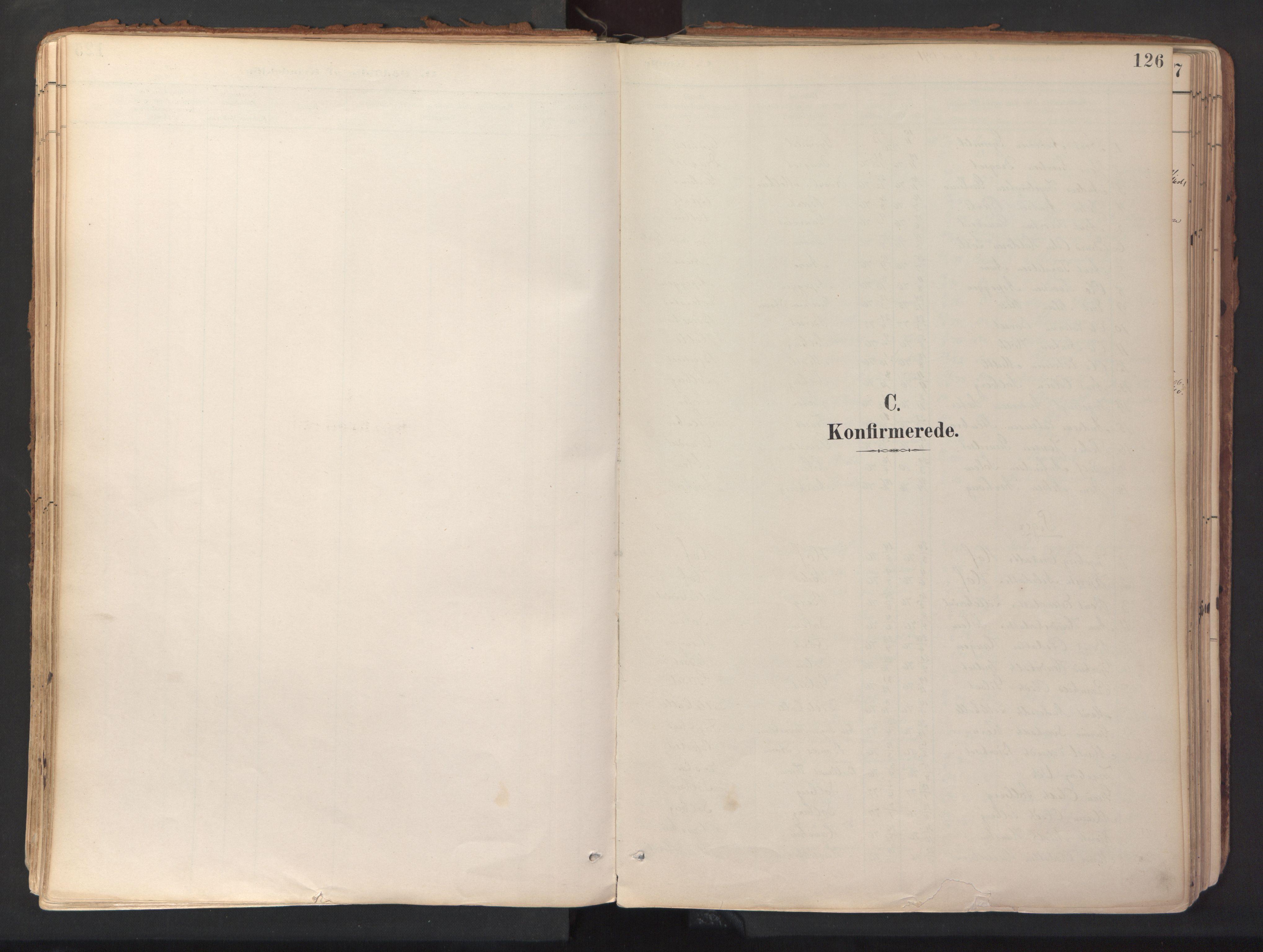 SAT, Ministerialprotokoller, klokkerbøker og fødselsregistre - Sør-Trøndelag, 689/L1041: Ministerialbok nr. 689A06, 1891-1923, s. 126