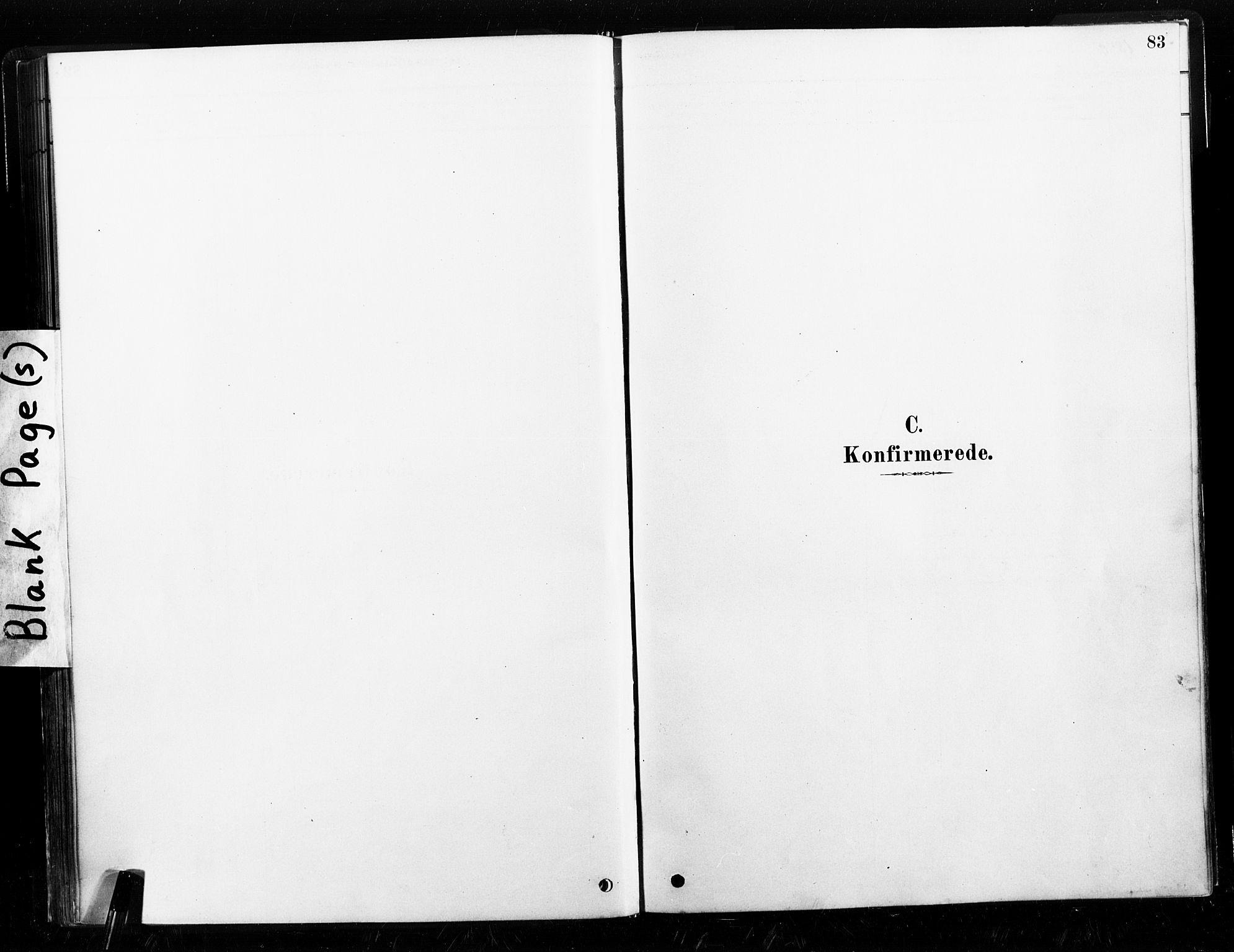 SAT, Ministerialprotokoller, klokkerbøker og fødselsregistre - Nord-Trøndelag, 789/L0705: Ministerialbok nr. 789A01, 1878-1910, s. 83