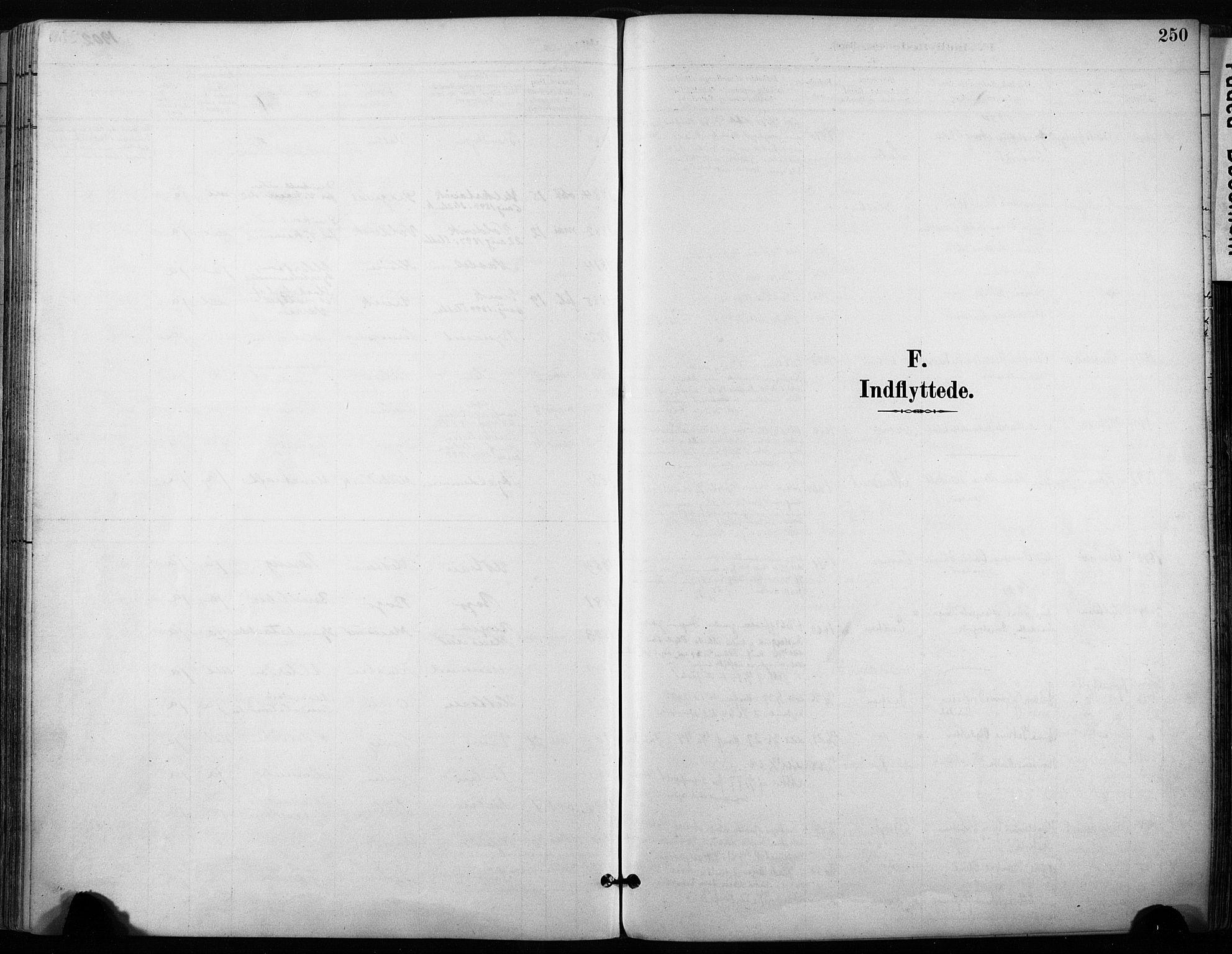 SAT, Ministerialprotokoller, klokkerbøker og fødselsregistre - Sør-Trøndelag, 640/L0579: Ministerialbok nr. 640A04, 1889-1902, s. 250