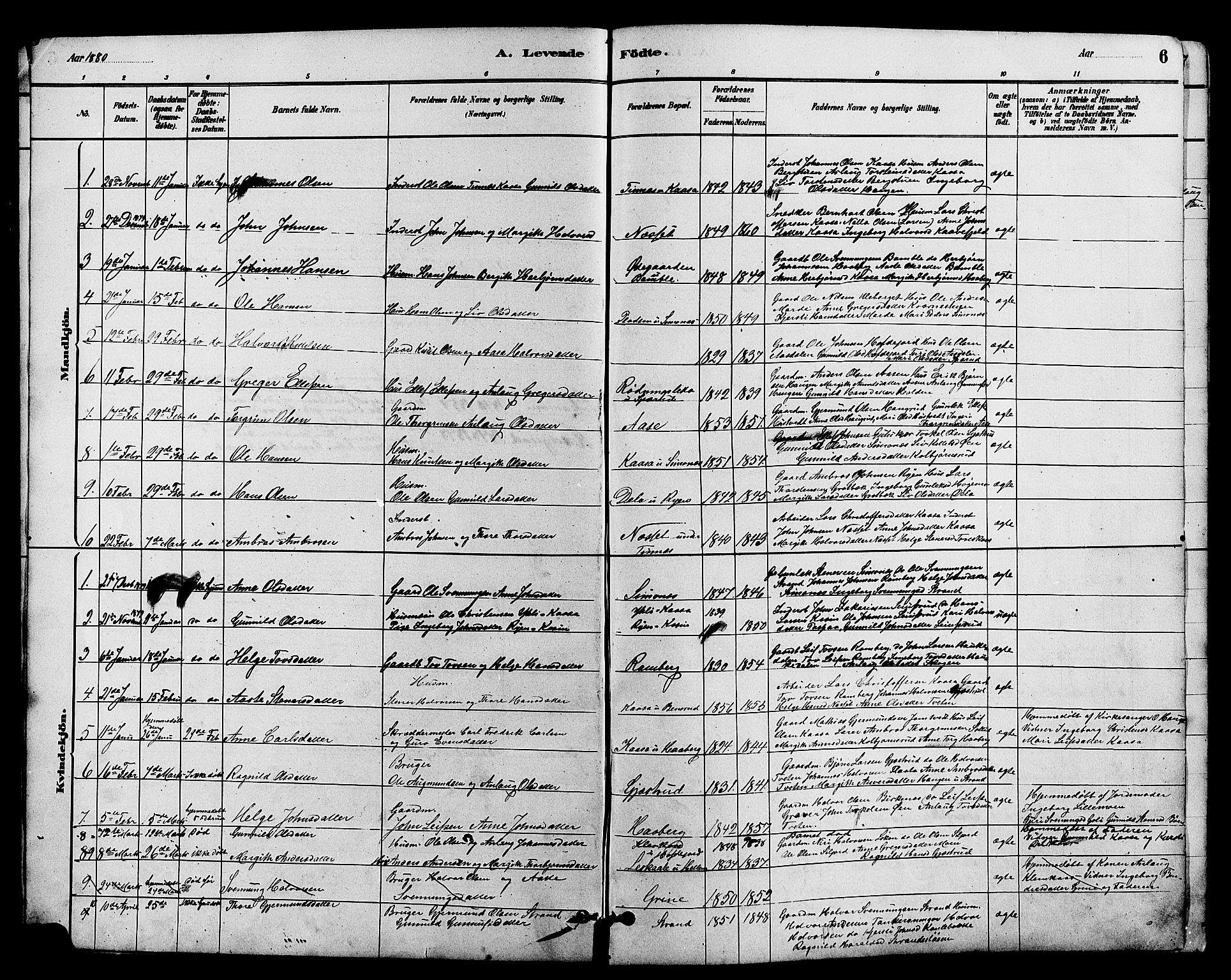 SAKO, Heddal kirkebøker, G/Ga/L0002: Klokkerbok nr. I 2, 1879-1908, s. 6