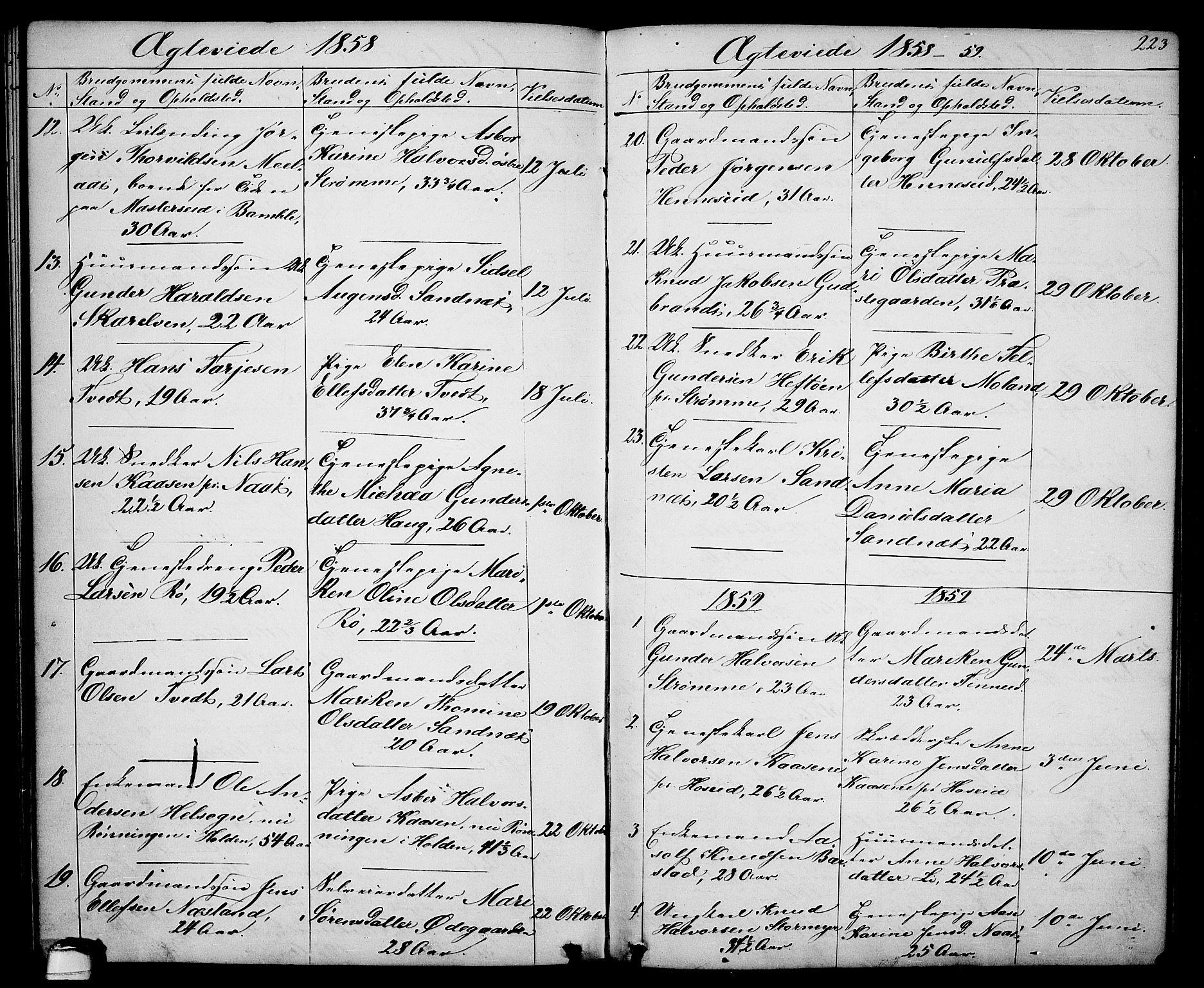 SAKO, Drangedal kirkebøker, G/Ga/L0002: Klokkerbok nr. I 2, 1856-1887, s. 223