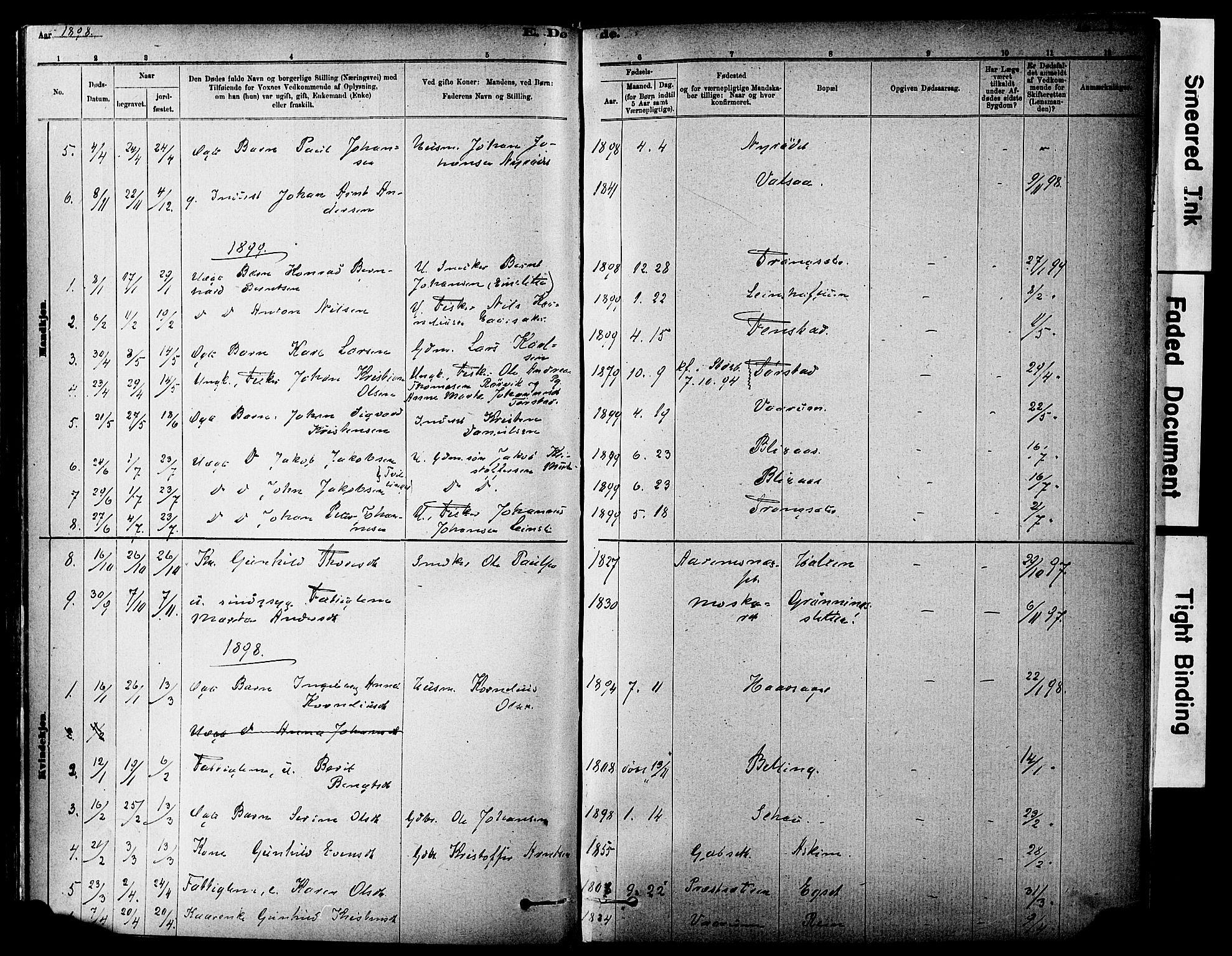 SAT, Ministerialprotokoller, klokkerbøker og fødselsregistre - Sør-Trøndelag, 646/L0615: Ministerialbok nr. 646A13, 1885-1900