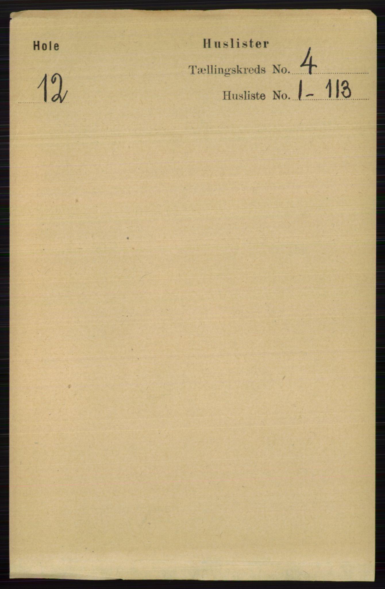 RA, Folketelling 1891 for 0612 Hole herred, 1891, s. 1731