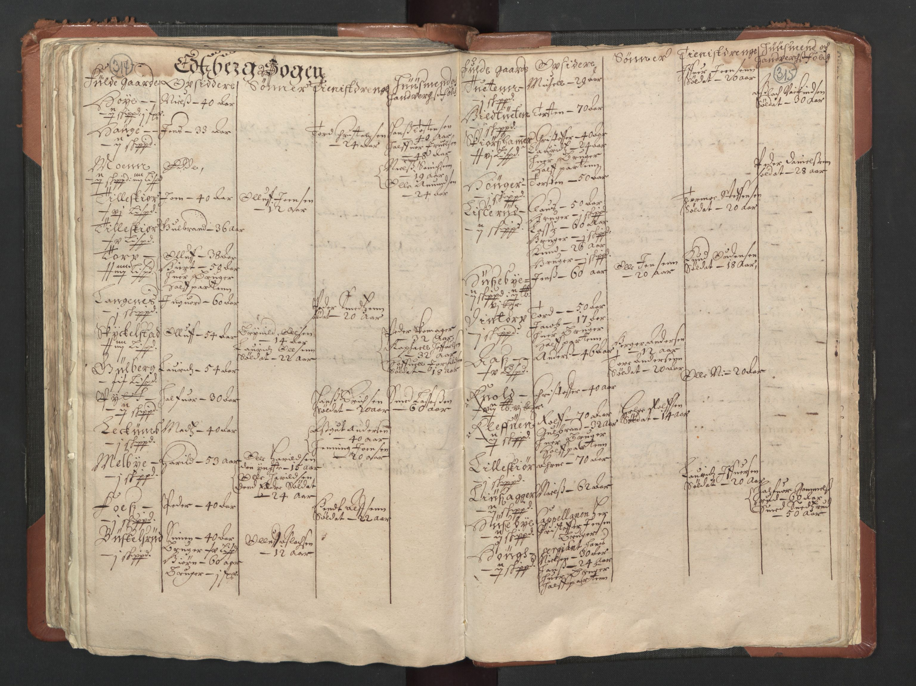 RA, Fogdenes og sorenskrivernes manntall 1664-1666, nr. 1: Fogderier (len og skipreider) i nåværende Østfold fylke, 1664, s. 314-315
