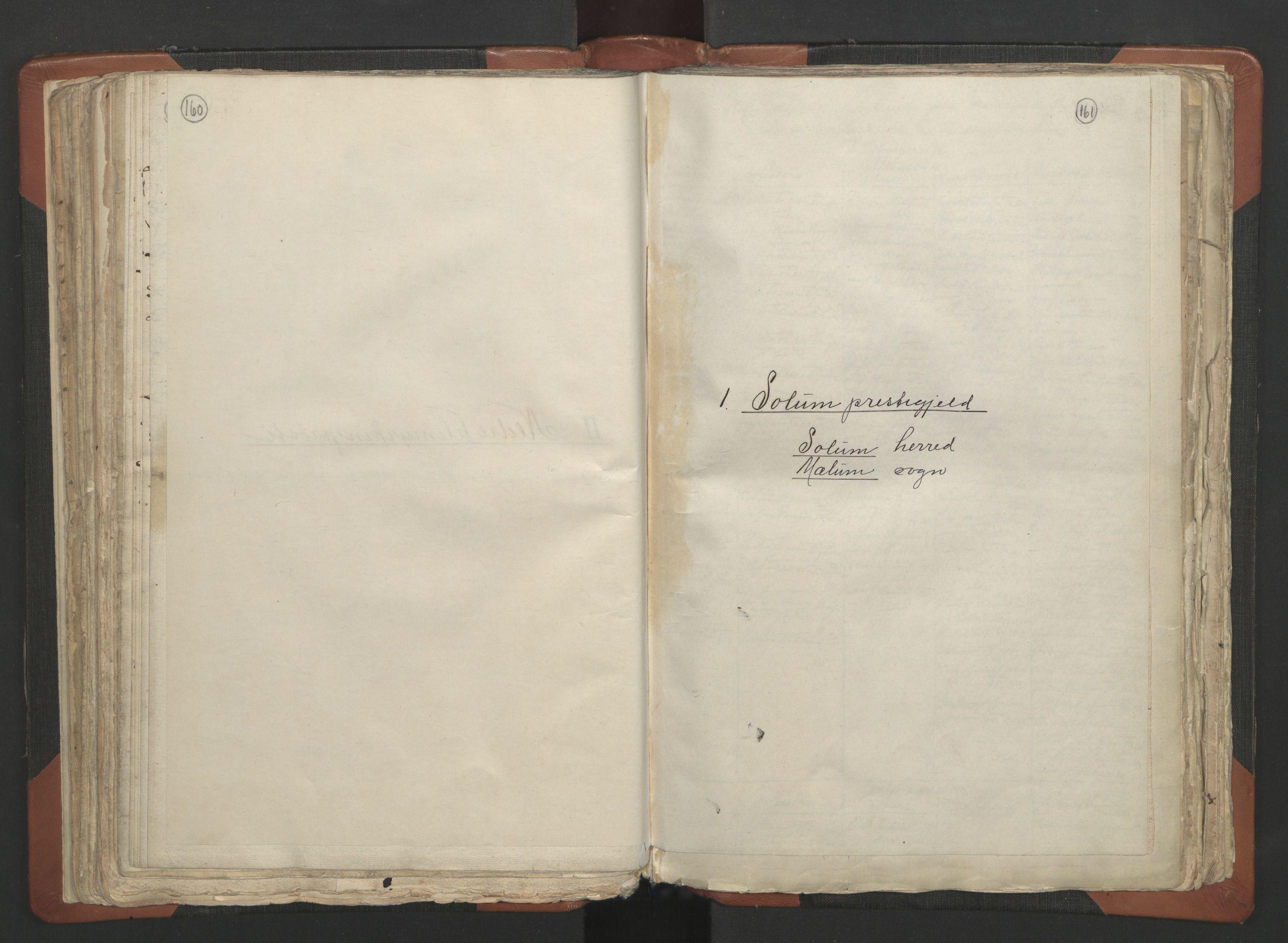 RA, Sogneprestenes manntall 1664-1666, nr. 12: Øvre Telemark prosti, Nedre Telemark prosti og Bamble prosti, 1664-1666, s. 160-161