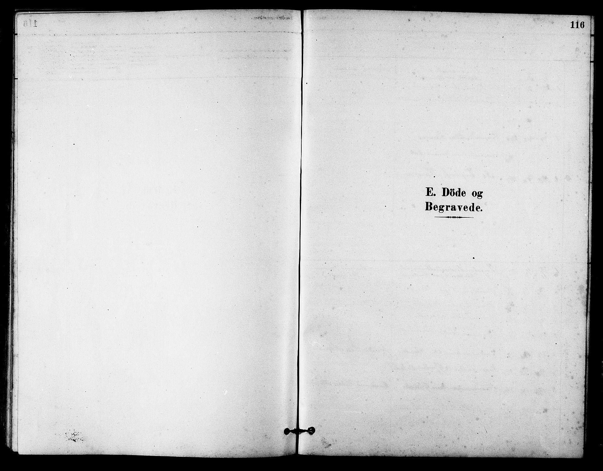 SAT, Ministerialprotokoller, klokkerbøker og fødselsregistre - Sør-Trøndelag, 631/L0514: Klokkerbok nr. 631C02, 1879-1912, s. 116