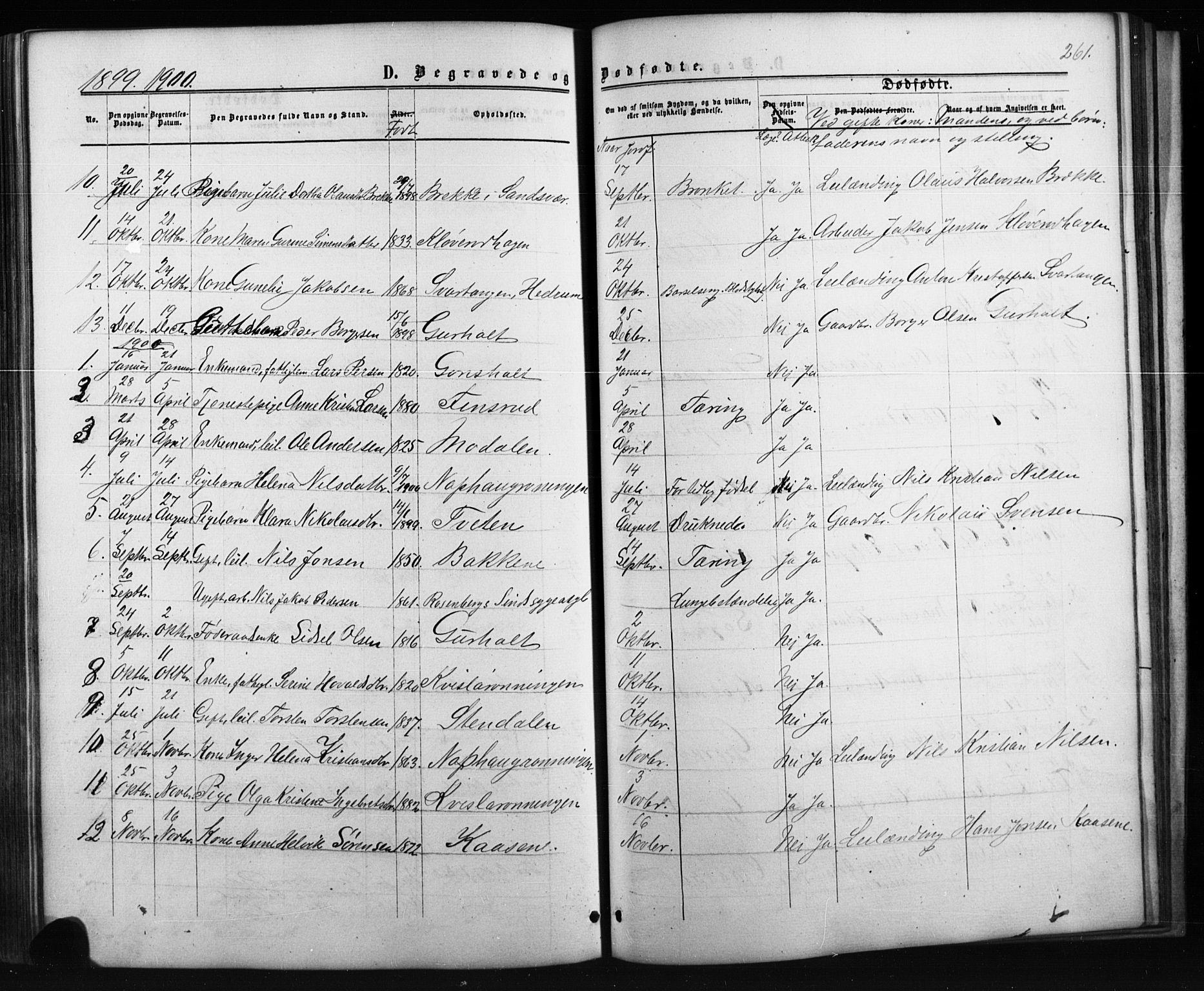 SAKO, Siljan kirkebøker, G/Ga/L0002: Klokkerbok nr. 2, 1864-1908, s. 261