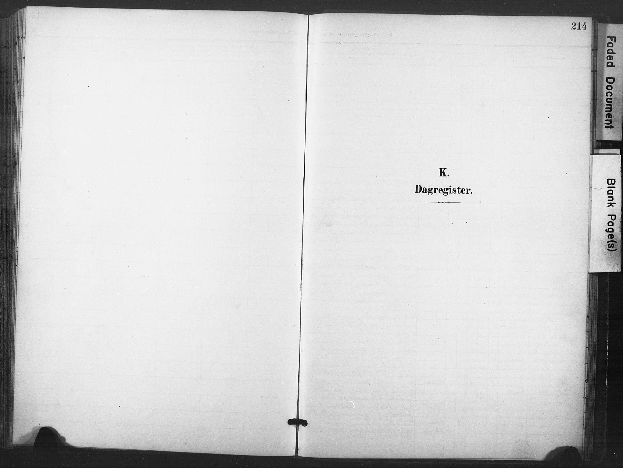 SAT, Ministerialprotokoller, klokkerbøker og fødselsregistre - Nord-Trøndelag, 713/L0122: Ministerialbok nr. 713A11, 1899-1910, s. 214
