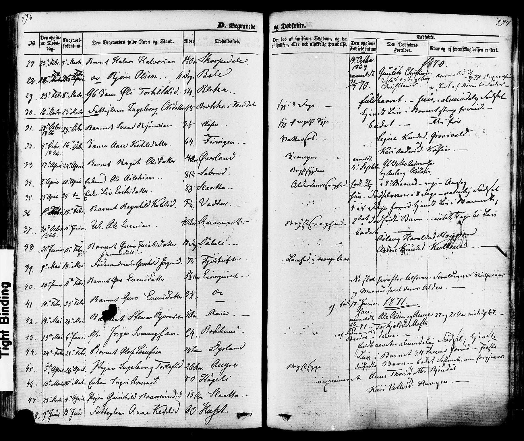 SAKO, Seljord kirkebøker, F/Fa/L0013: Ministerialbok nr. I 13, 1866-1876, s. 596-597
