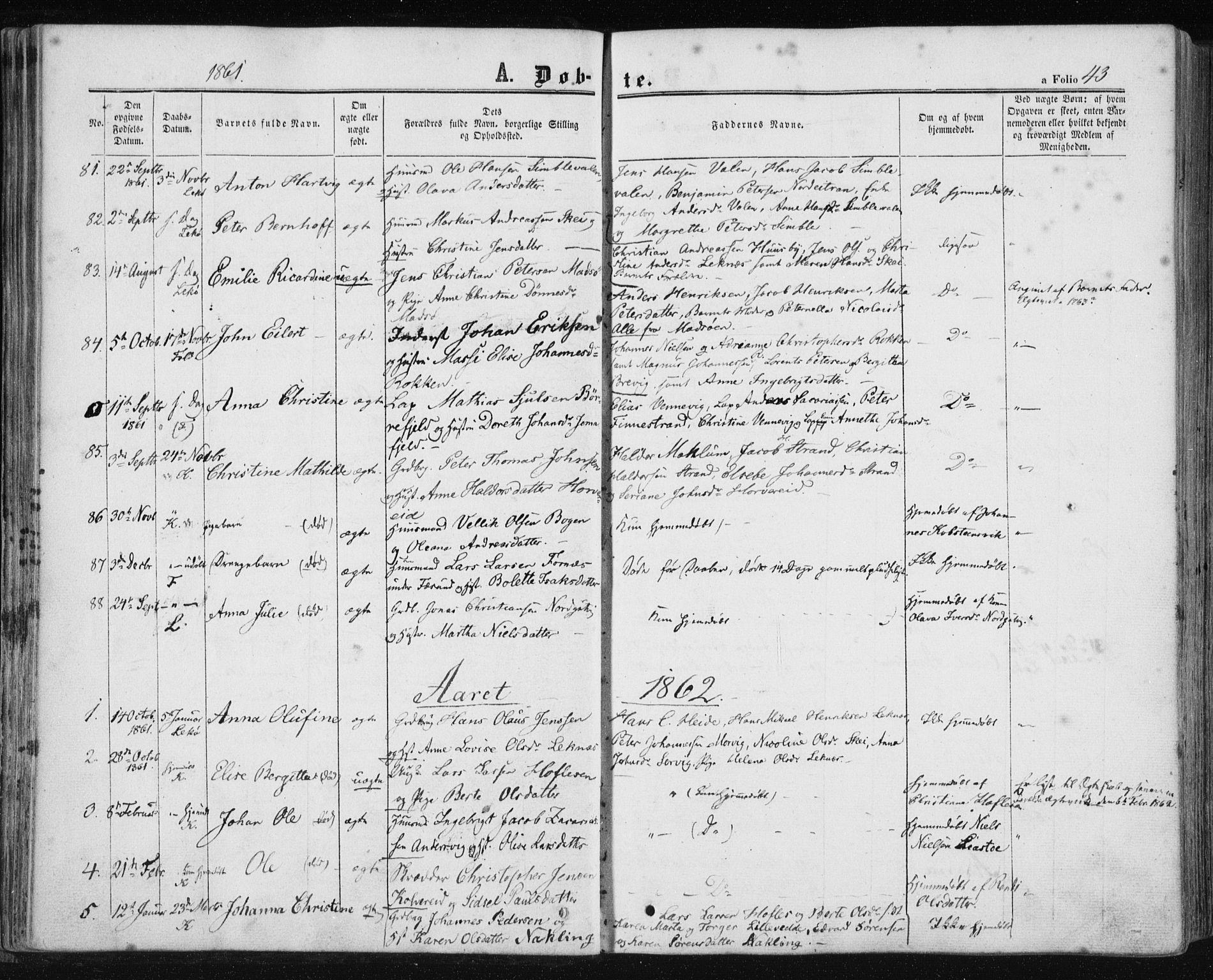 SAT, Ministerialprotokoller, klokkerbøker og fødselsregistre - Nord-Trøndelag, 780/L0641: Ministerialbok nr. 780A06, 1857-1874, s. 43