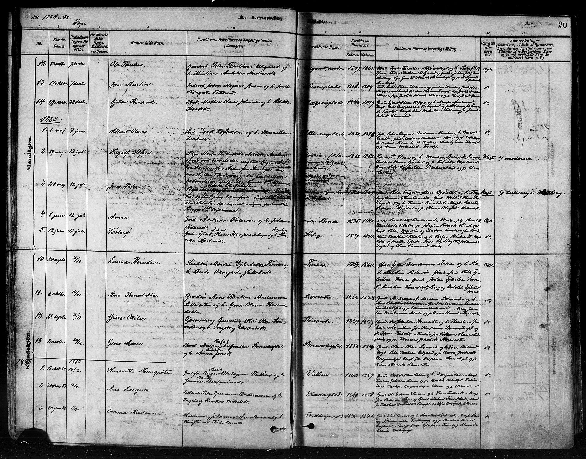 SAT, Ministerialprotokoller, klokkerbøker og fødselsregistre - Nord-Trøndelag, 746/L0448: Ministerialbok nr. 746A07 /1, 1878-1900, s. 20
