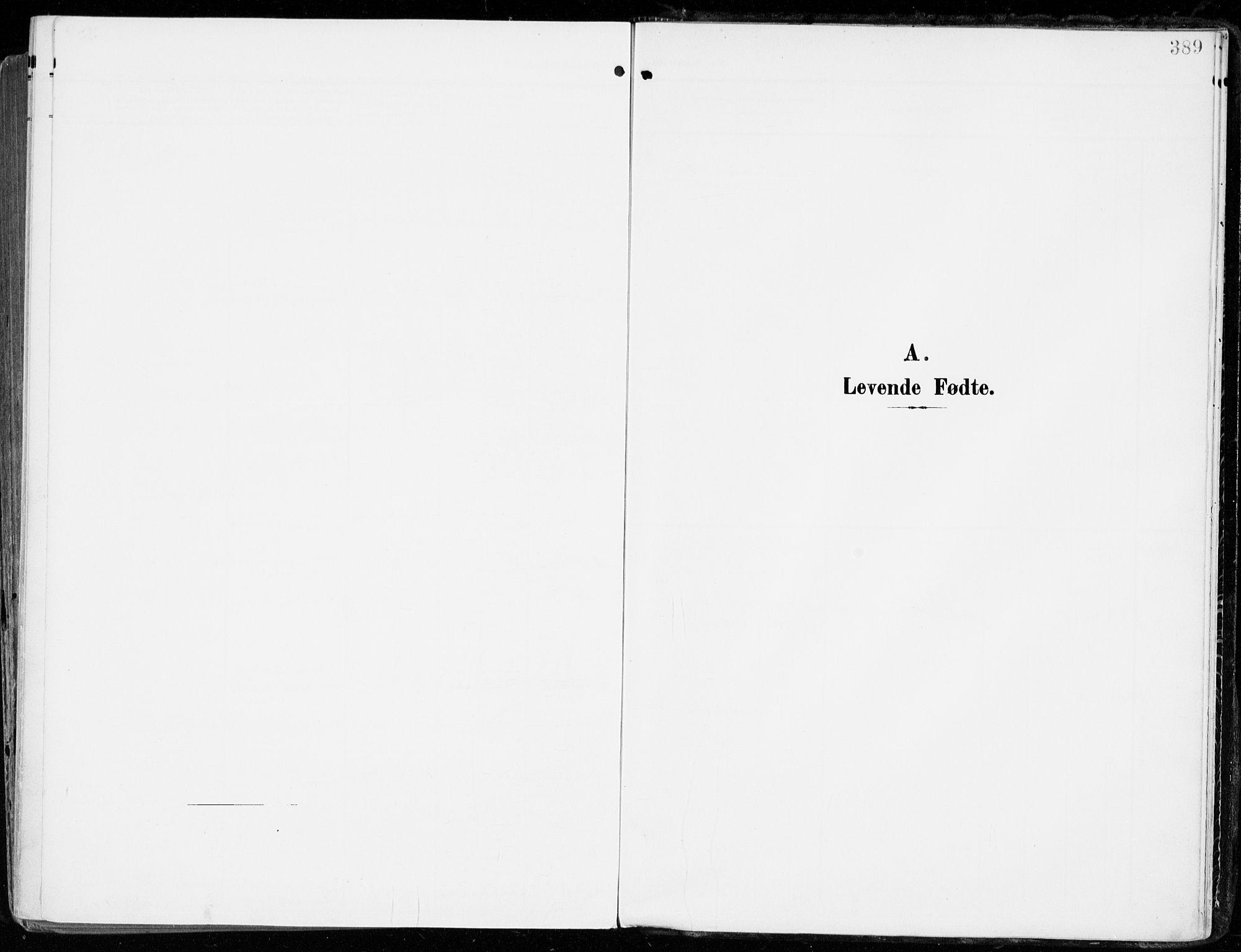 SAKO, Tjølling kirkebøker, F/Fa/L0010: Ministerialbok nr. 10, 1906-1923, s. 389