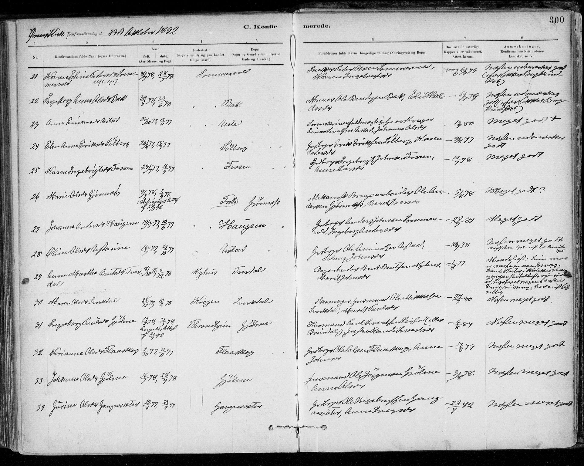 SAT, Ministerialprotokoller, klokkerbøker og fødselsregistre - Sør-Trøndelag, 668/L0809: Ministerialbok nr. 668A09, 1881-1895, s. 300