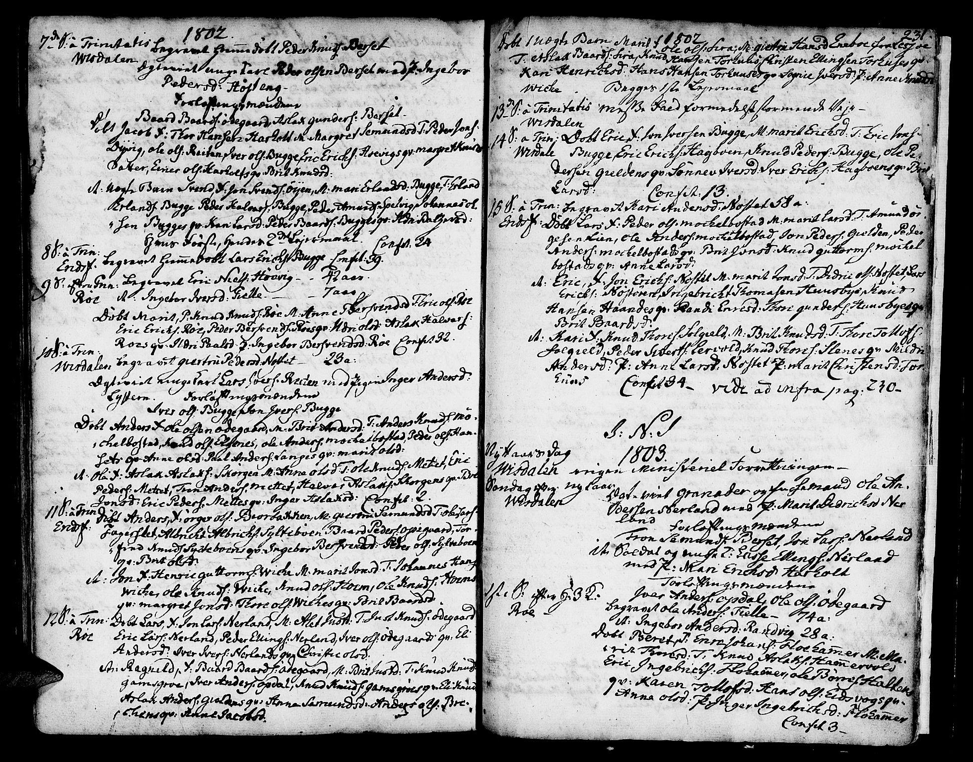 SAT, Ministerialprotokoller, klokkerbøker og fødselsregistre - Møre og Romsdal, 551/L0621: Ministerialbok nr. 551A01, 1757-1803, s. 231