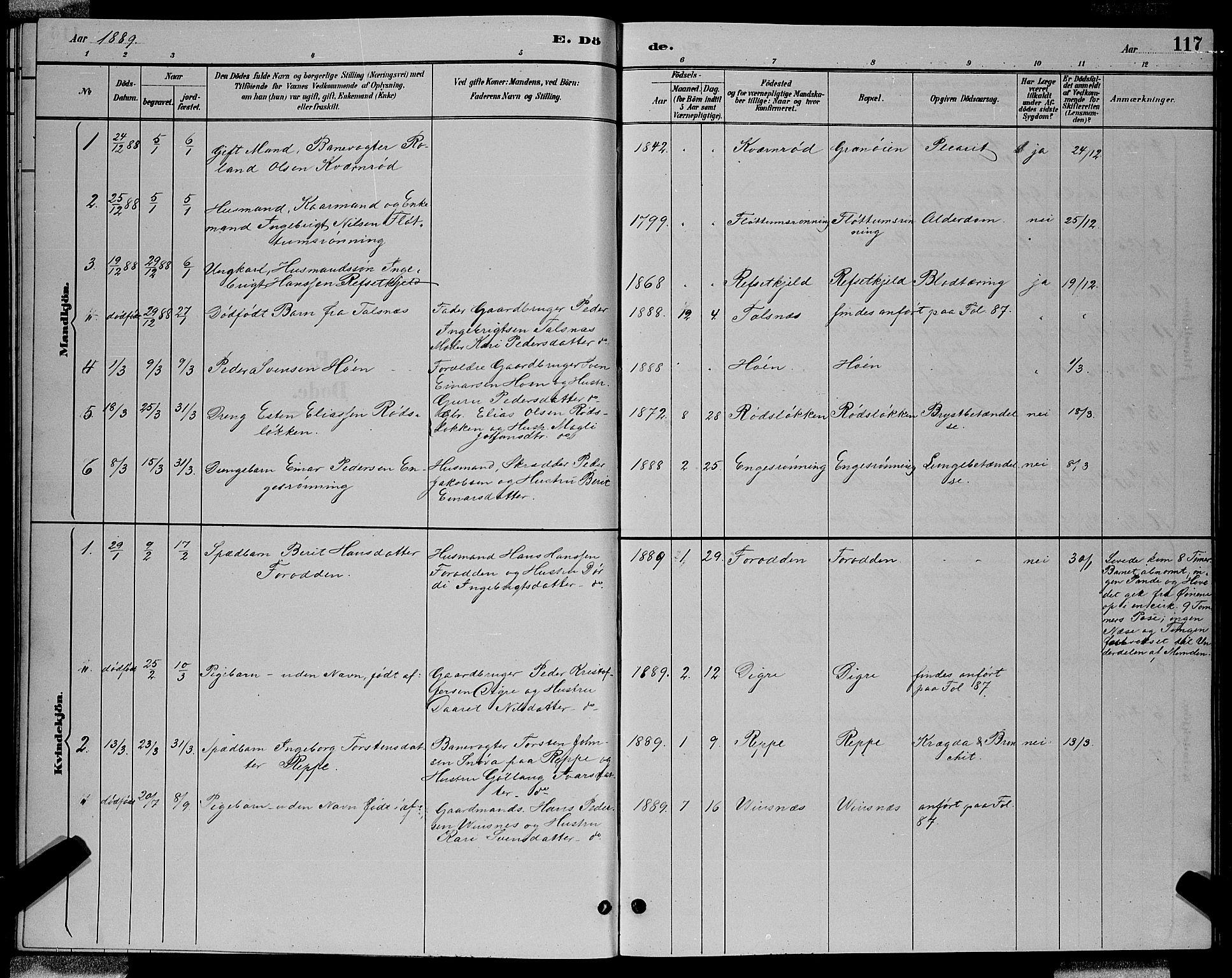 SAT, Ministerialprotokoller, klokkerbøker og fødselsregistre - Sør-Trøndelag, 688/L1028: Klokkerbok nr. 688C03, 1889-1899, s. 117