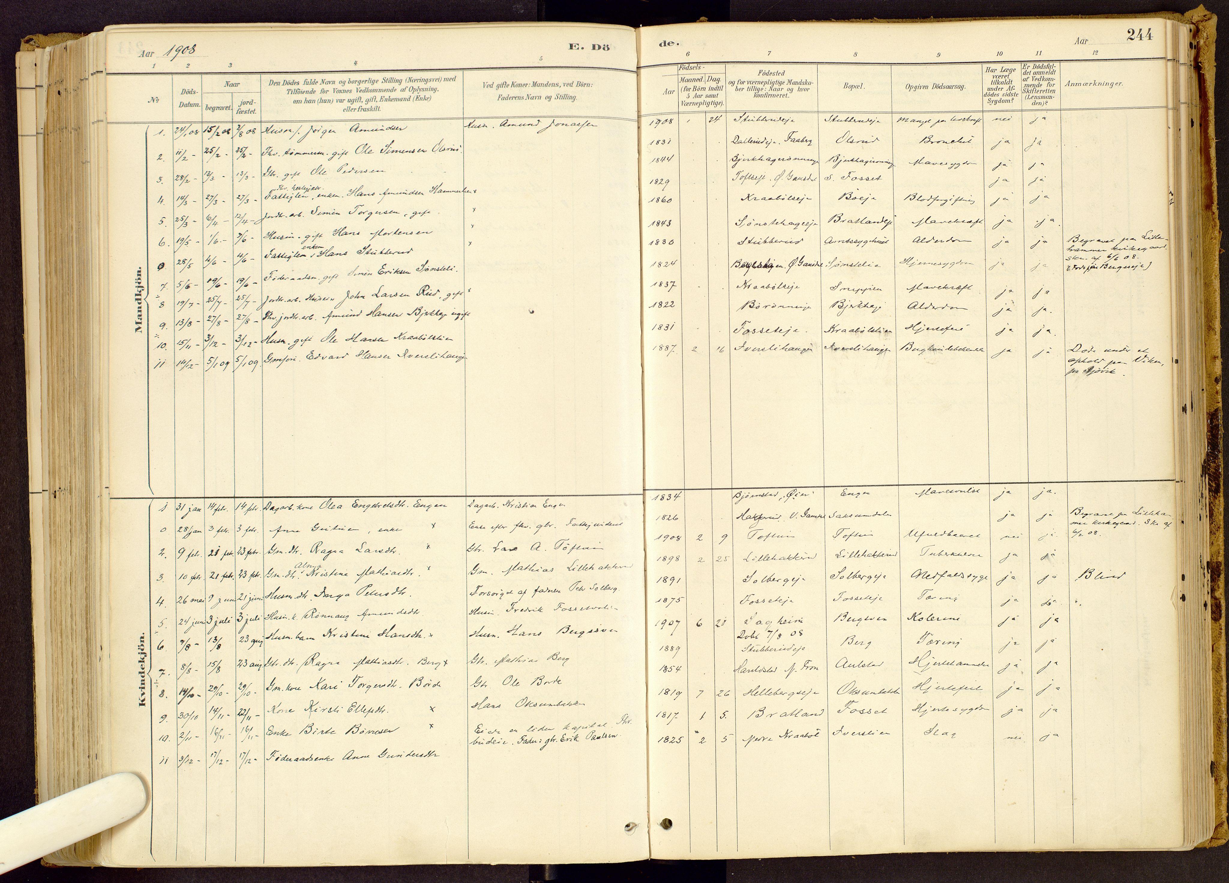 SAH, Vestre Gausdal prestekontor, Ministerialbok nr. 1, 1887-1914, s. 244