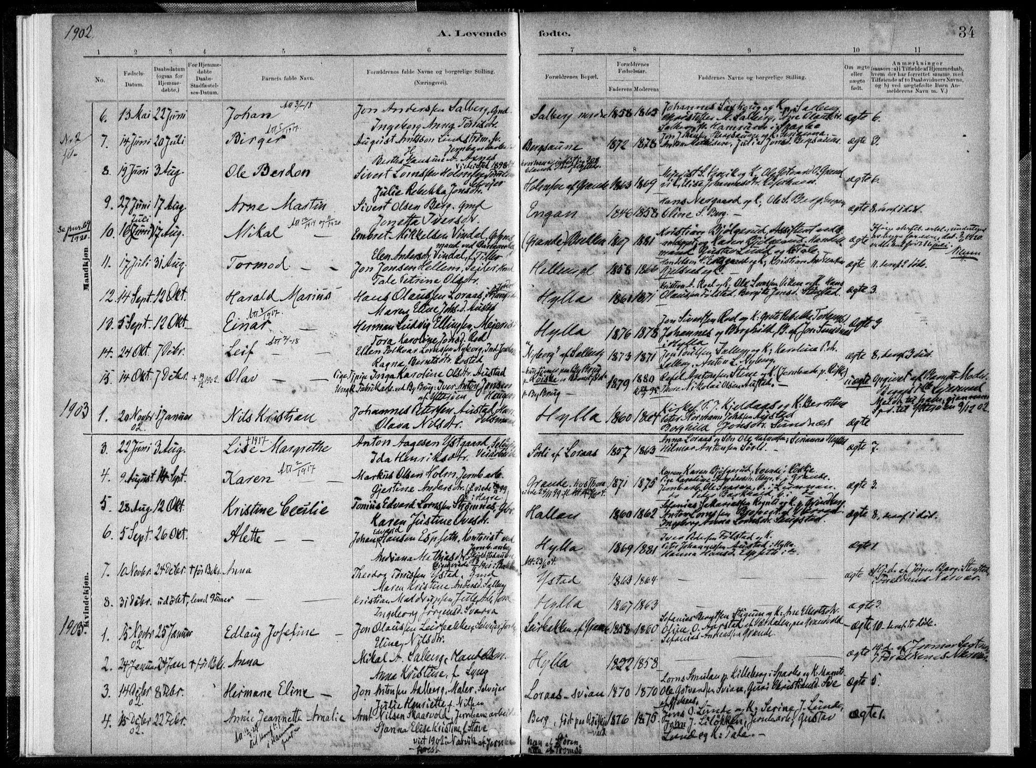 SAT, Ministerialprotokoller, klokkerbøker og fødselsregistre - Nord-Trøndelag, 731/L0309: Ministerialbok nr. 731A01, 1879-1918, s. 34