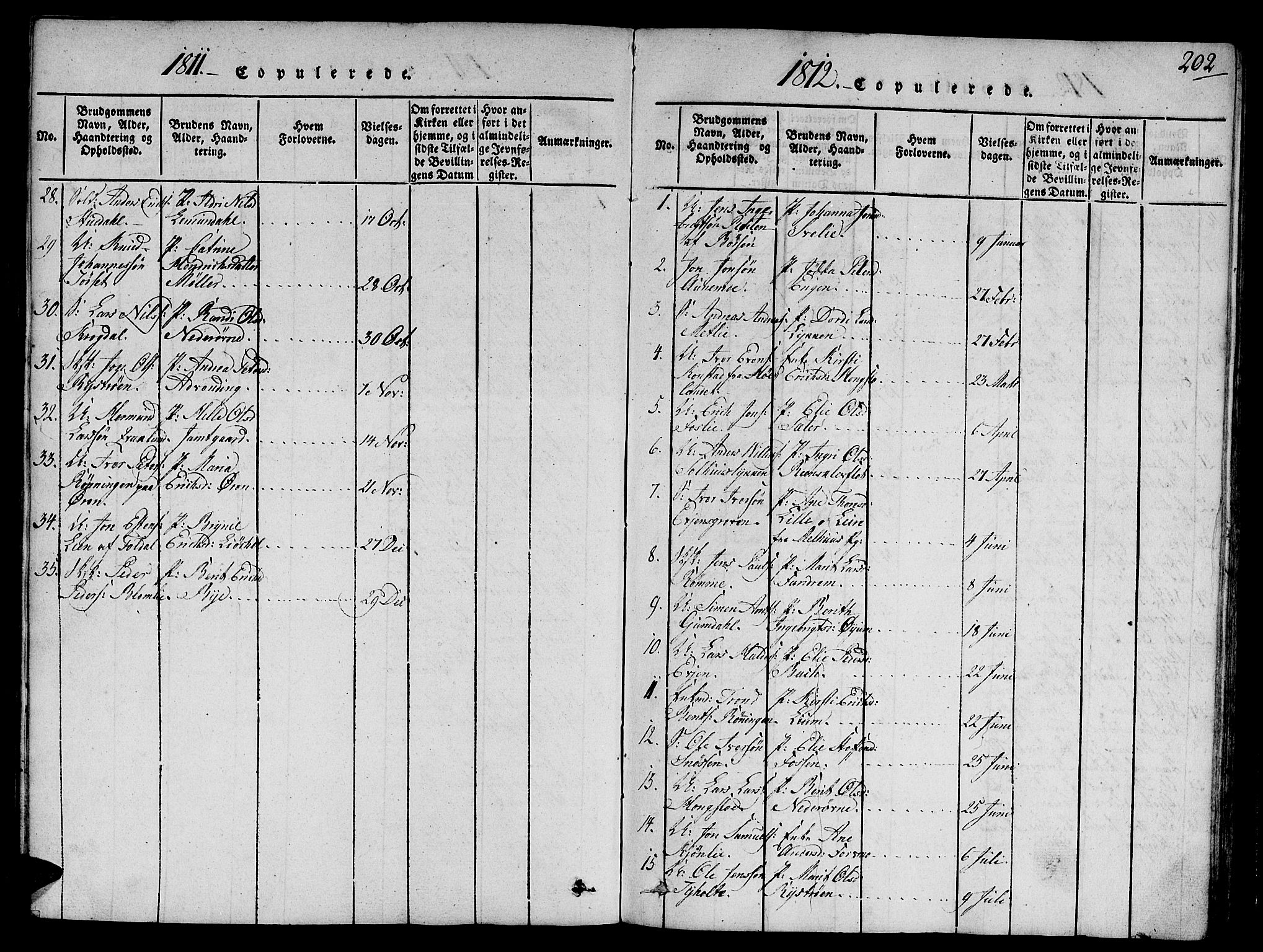 SAT, Ministerialprotokoller, klokkerbøker og fødselsregistre - Sør-Trøndelag, 668/L0803: Ministerialbok nr. 668A03, 1800-1826, s. 202