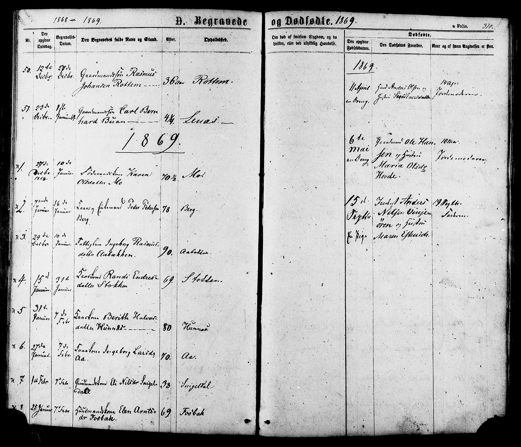 SAT, Ministerialprotokoller, klokkerbøker og fødselsregistre - Sør-Trøndelag, 630/L0495: Ministerialbok nr. 630A08, 1868-1878, s. 310