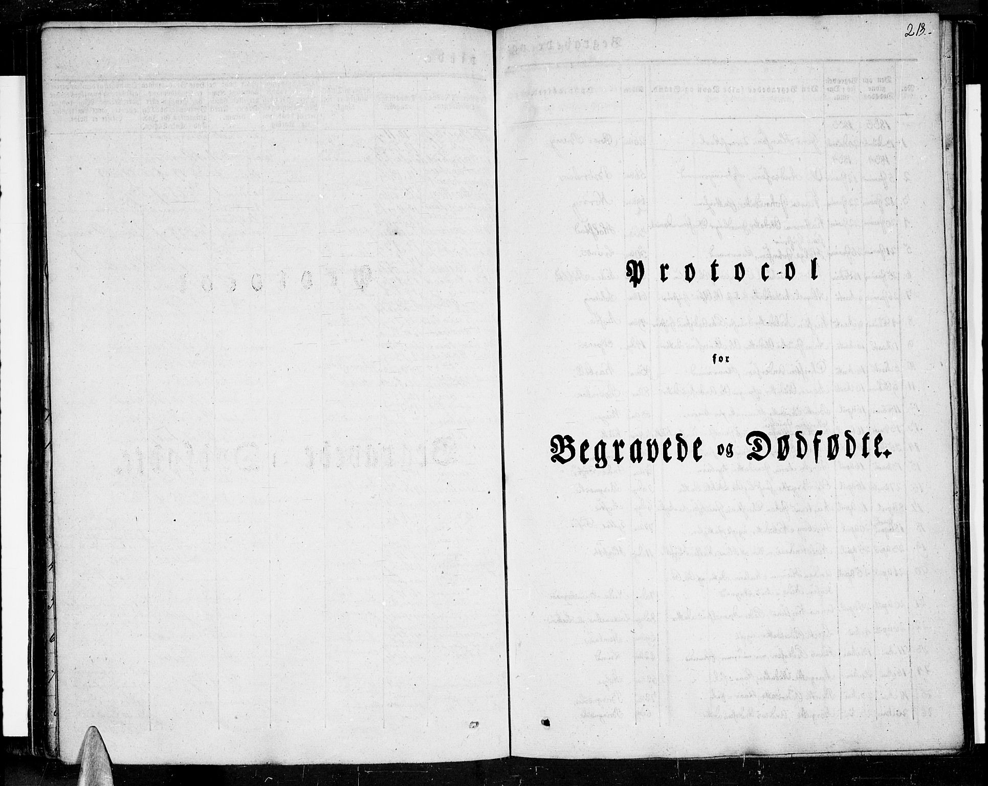 SAT, Ministerialprotokoller, klokkerbøker og fødselsregistre - Nordland, 852/L0737: Ministerialbok nr. 852A07, 1833-1849, s. 213