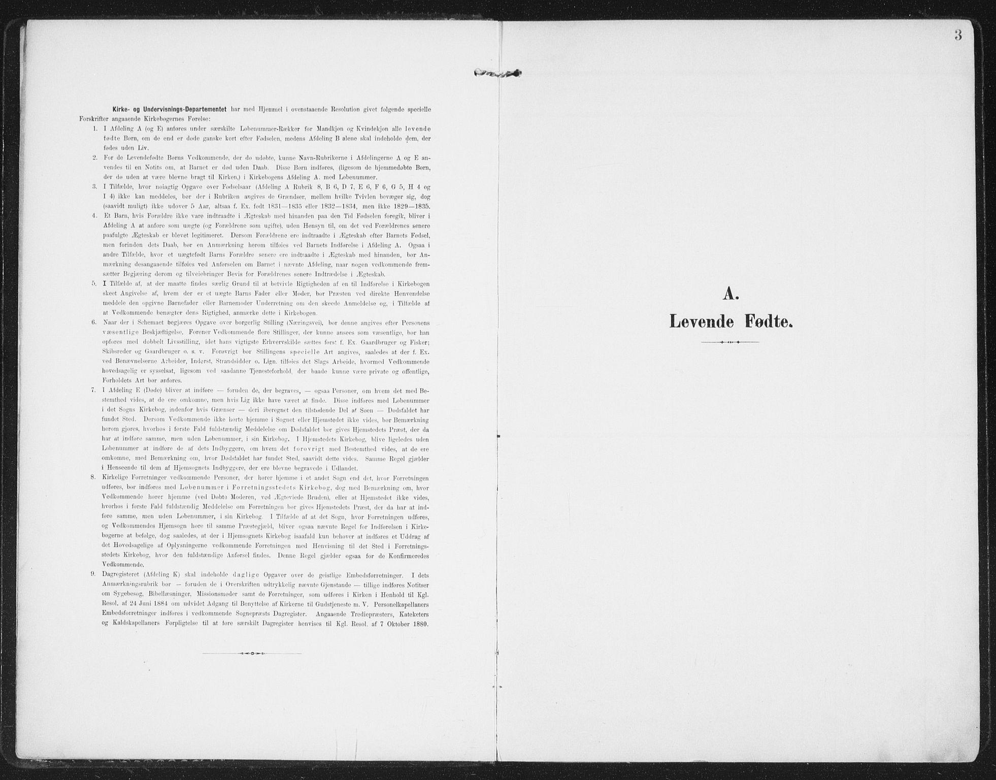 SAT, Ministerialprotokoller, klokkerbøker og fødselsregistre - Nordland, 827/L0402: Ministerialbok nr. 827A14, 1903-1912, s. 3