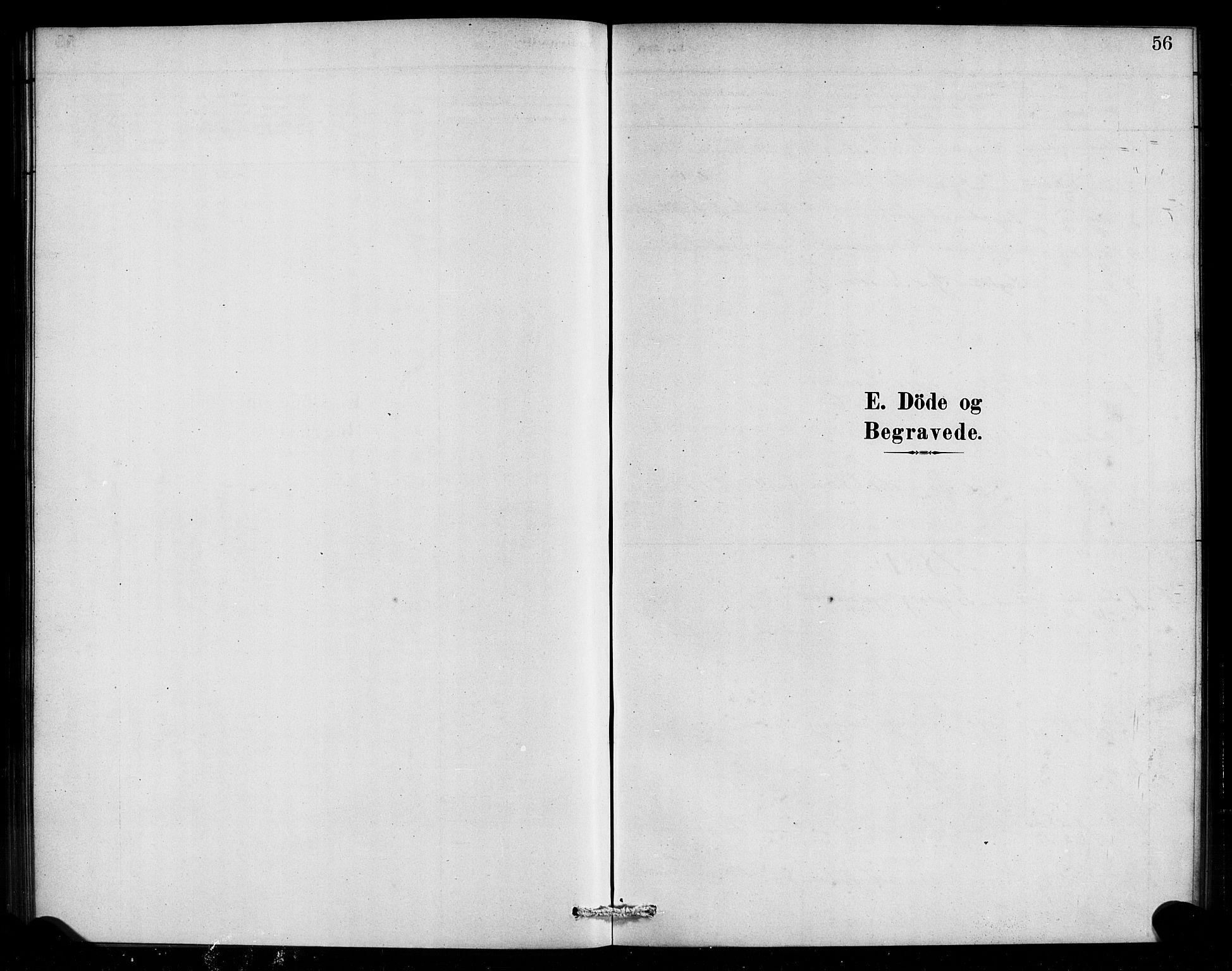 SAB, Aurland Sokneprestembete*, Ministerialbok nr. E 1, 1880-1907, s. 56