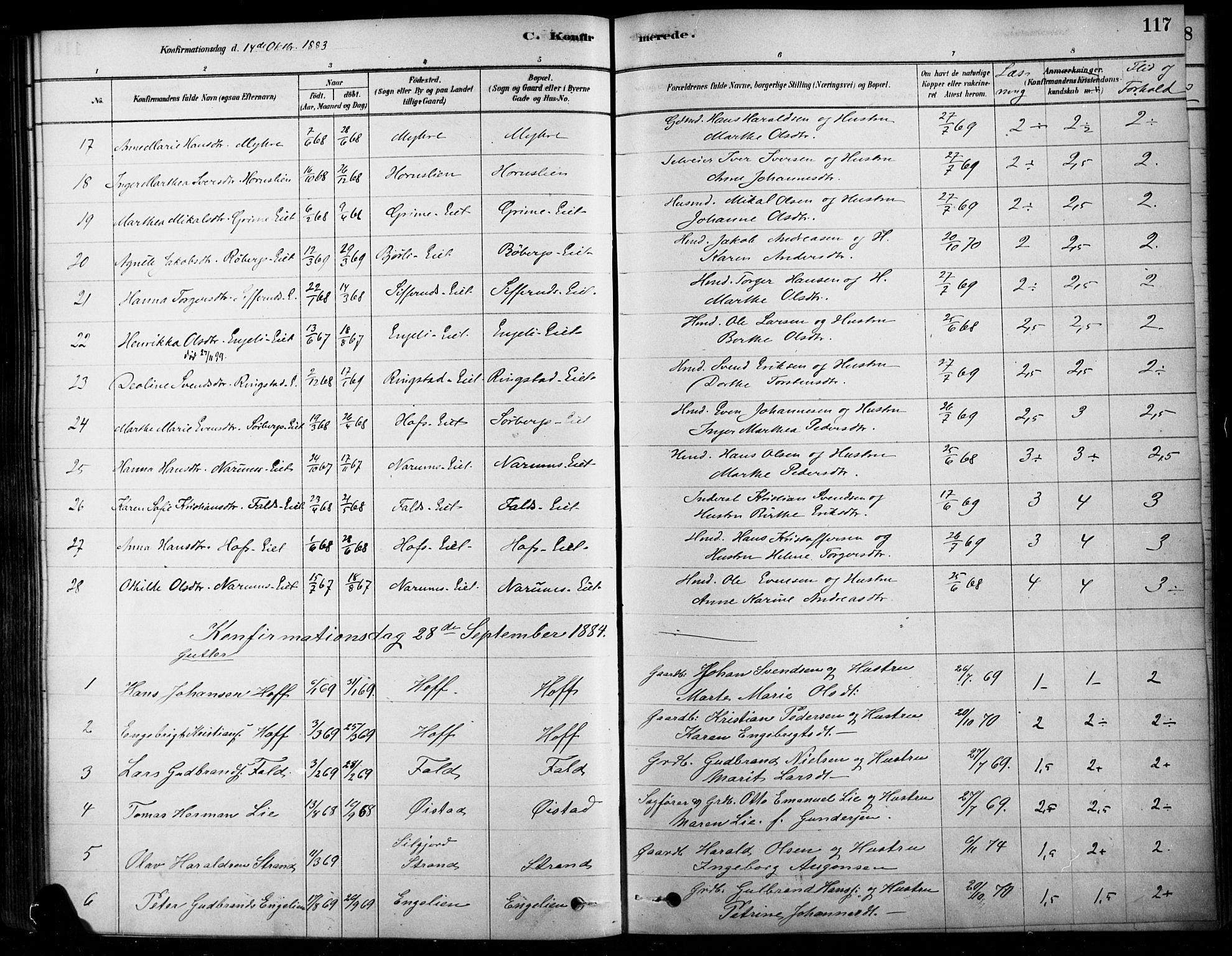 SAH, Søndre Land prestekontor, K/L0003: Ministerialbok nr. 3, 1878-1894, s. 117