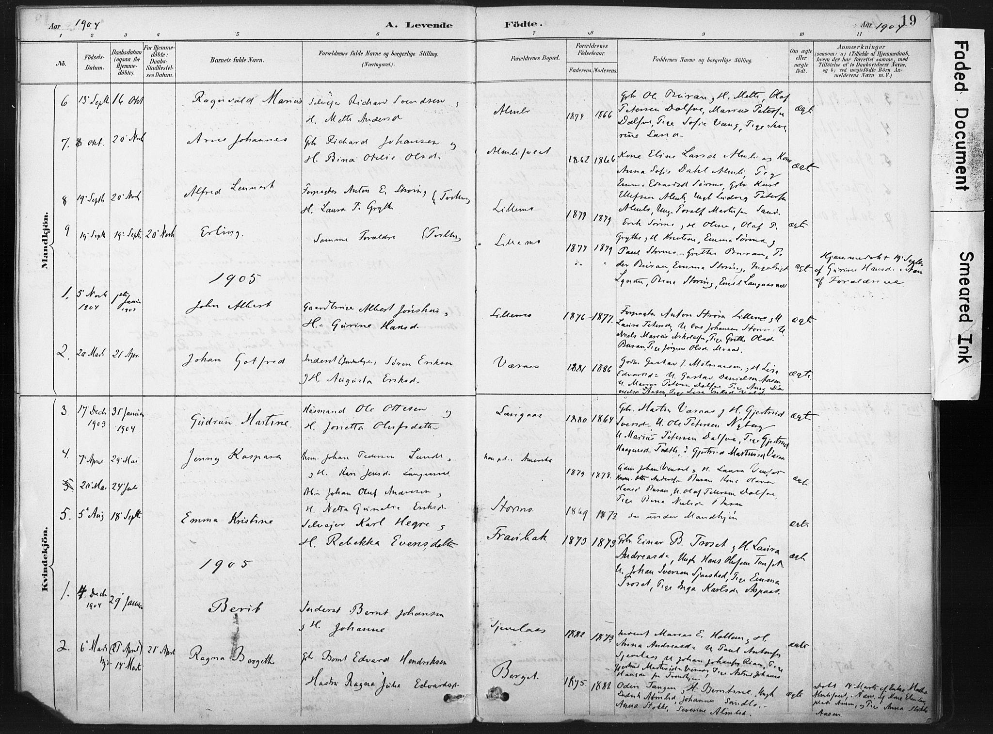 SAT, Ministerialprotokoller, klokkerbøker og fødselsregistre - Nord-Trøndelag, 718/L0175: Ministerialbok nr. 718A01, 1890-1923, s. 19