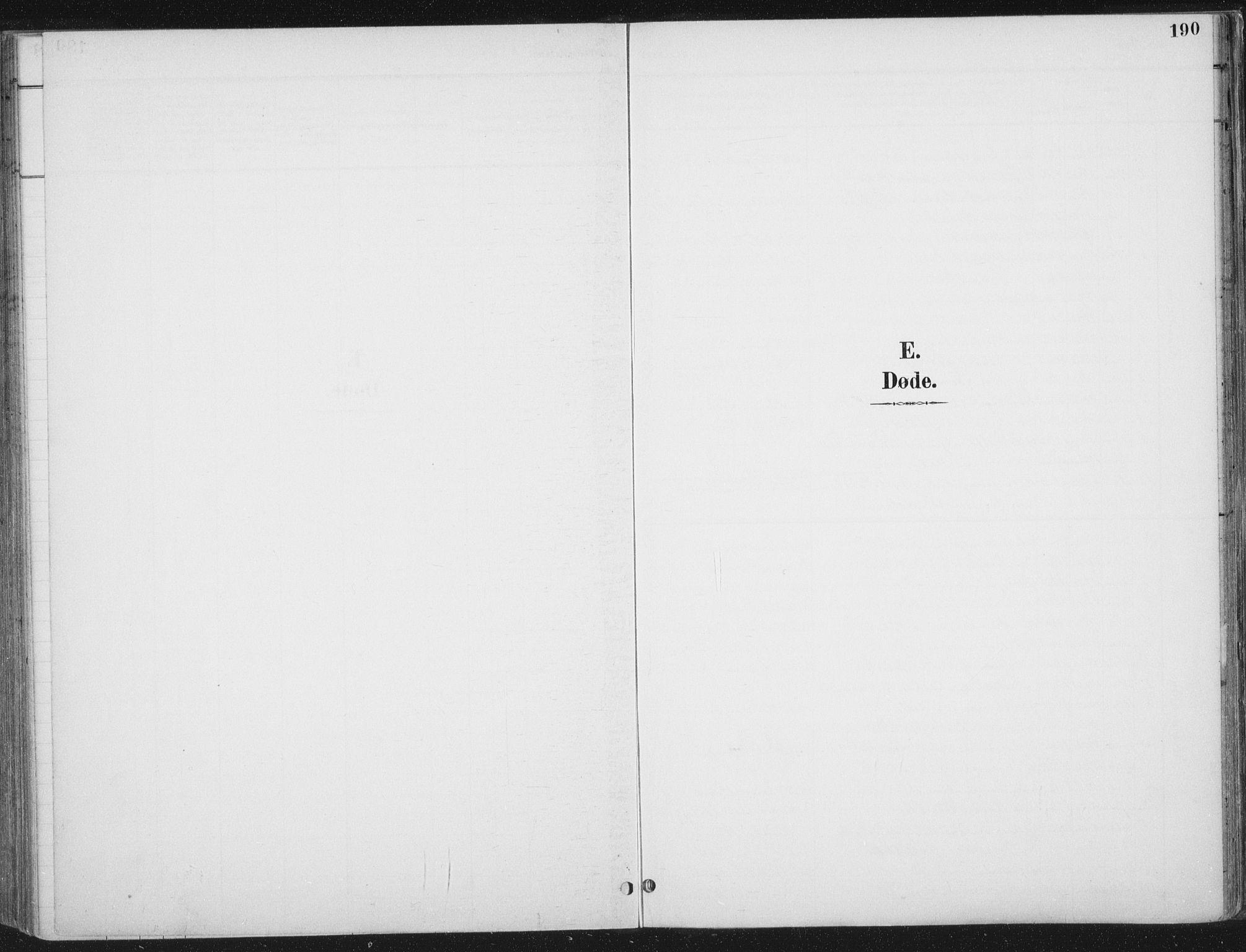 SAT, Ministerialprotokoller, klokkerbøker og fødselsregistre - Nord-Trøndelag, 709/L0082: Ministerialbok nr. 709A22, 1896-1916, s. 190