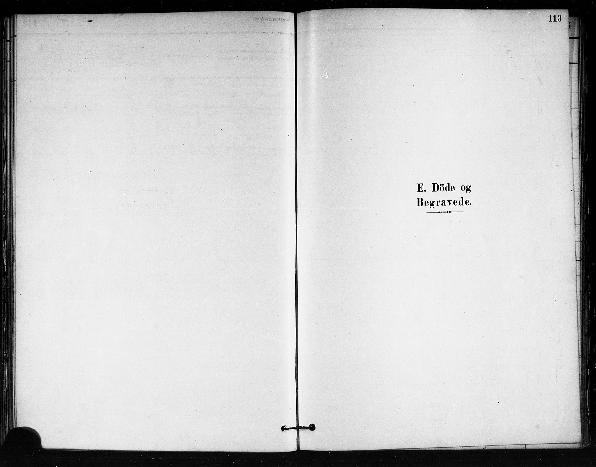 SAKO, Tjøme kirkebøker, F/Fa/L0001: Ministerialbok nr. 1, 1879-1890, s. 113