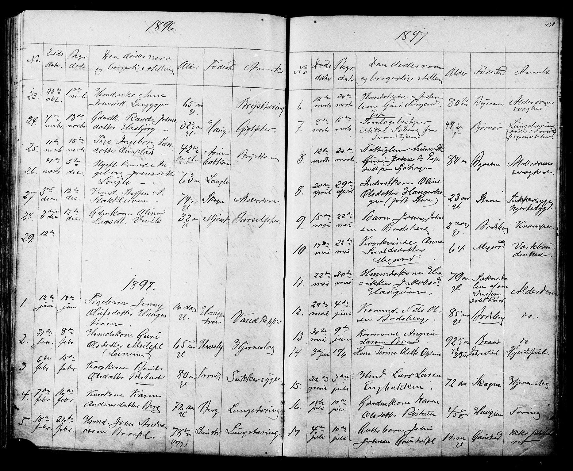 SAT, Ministerialprotokoller, klokkerbøker og fødselsregistre - Sør-Trøndelag, 612/L0387: Klokkerbok nr. 612C03, 1874-1908, s. 238