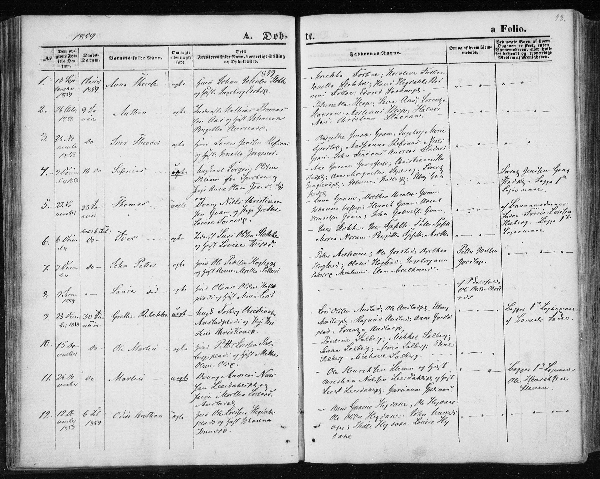 SAT, Ministerialprotokoller, klokkerbøker og fødselsregistre - Nord-Trøndelag, 730/L0283: Ministerialbok nr. 730A08, 1855-1865, s. 43