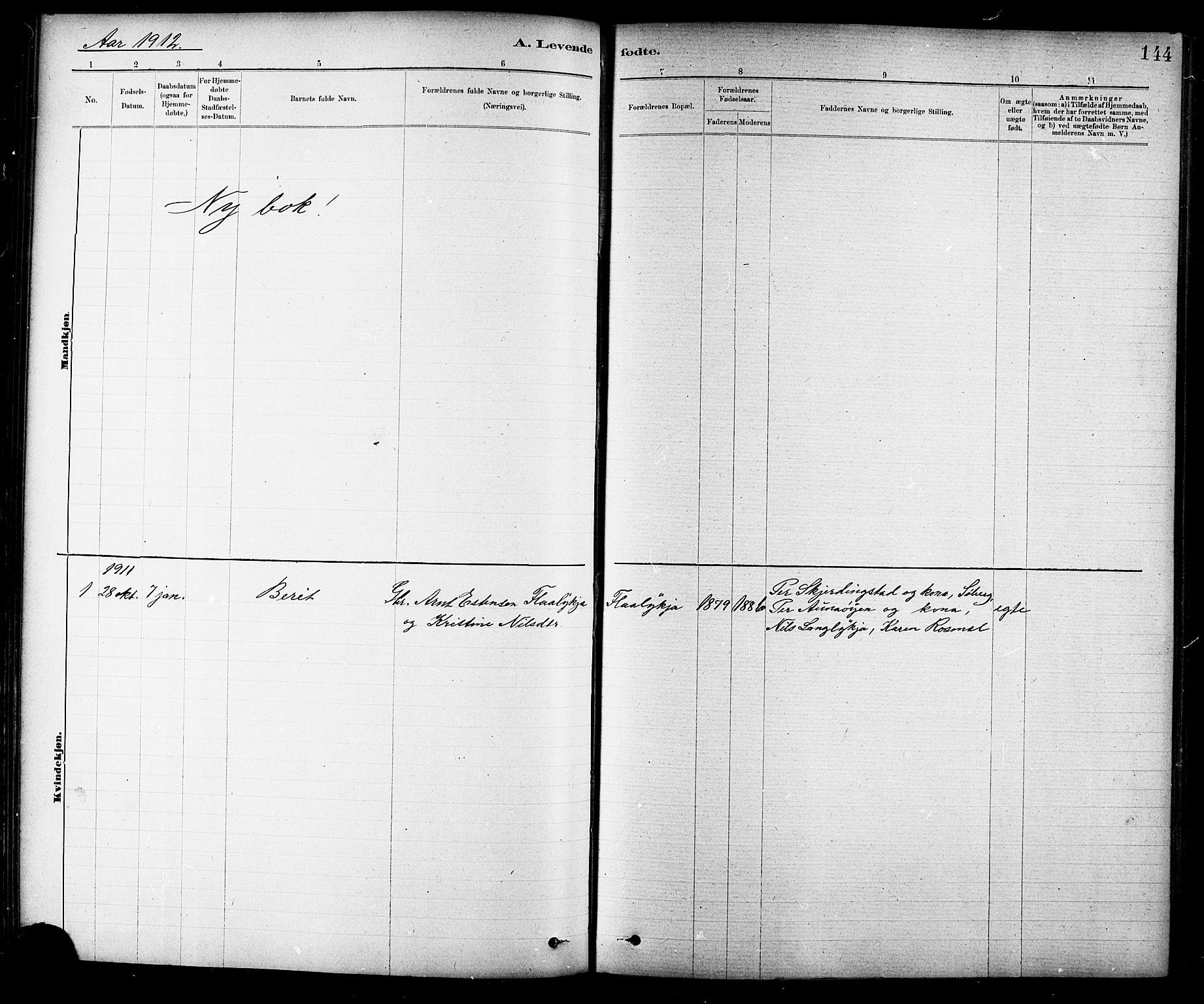 SAT, Ministerialprotokoller, klokkerbøker og fødselsregistre - Sør-Trøndelag, 691/L1094: Klokkerbok nr. 691C05, 1879-1911, s. 144