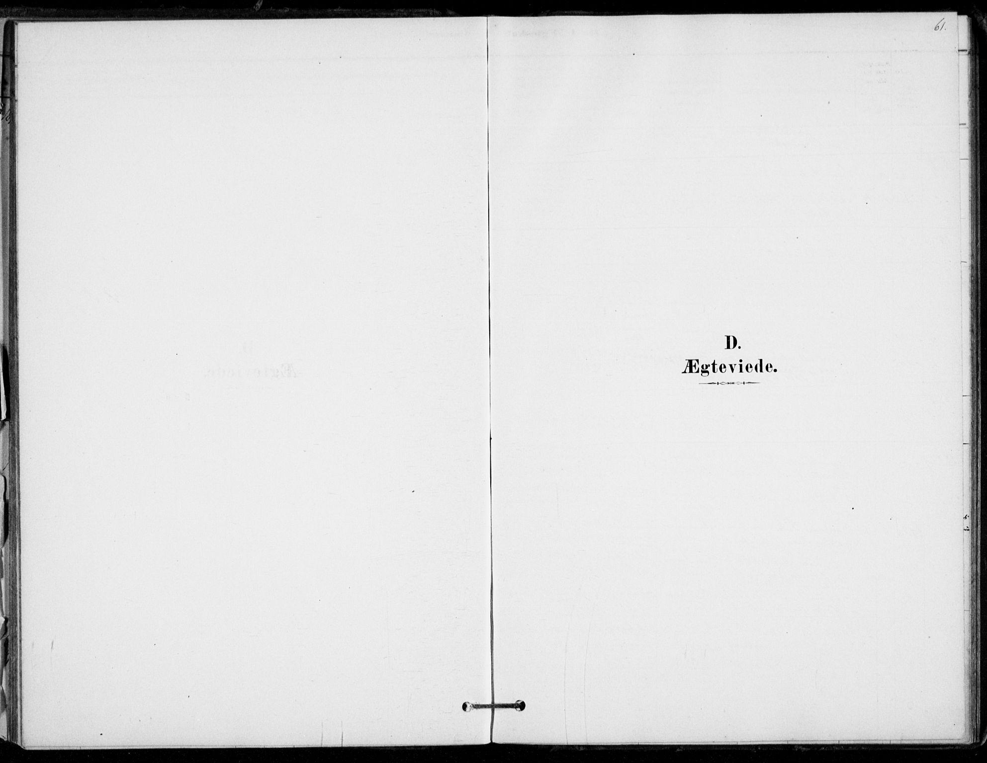 SAKO, Hof kirkebøker, F/Fb/L0001: Ministerialbok nr. II 1, 1878-1907, s. 61