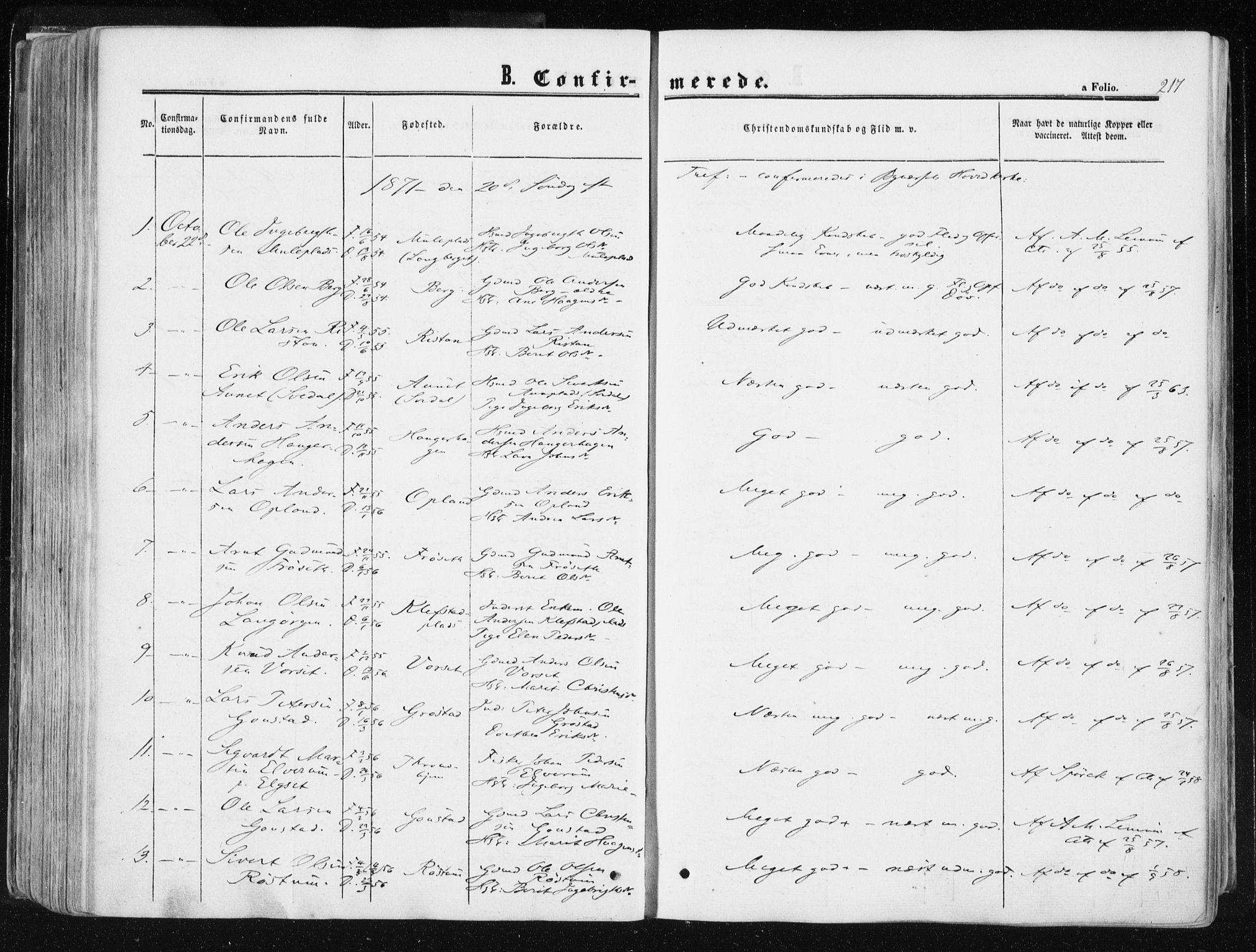 SAT, Ministerialprotokoller, klokkerbøker og fødselsregistre - Sør-Trøndelag, 612/L0377: Ministerialbok nr. 612A09, 1859-1877, s. 217