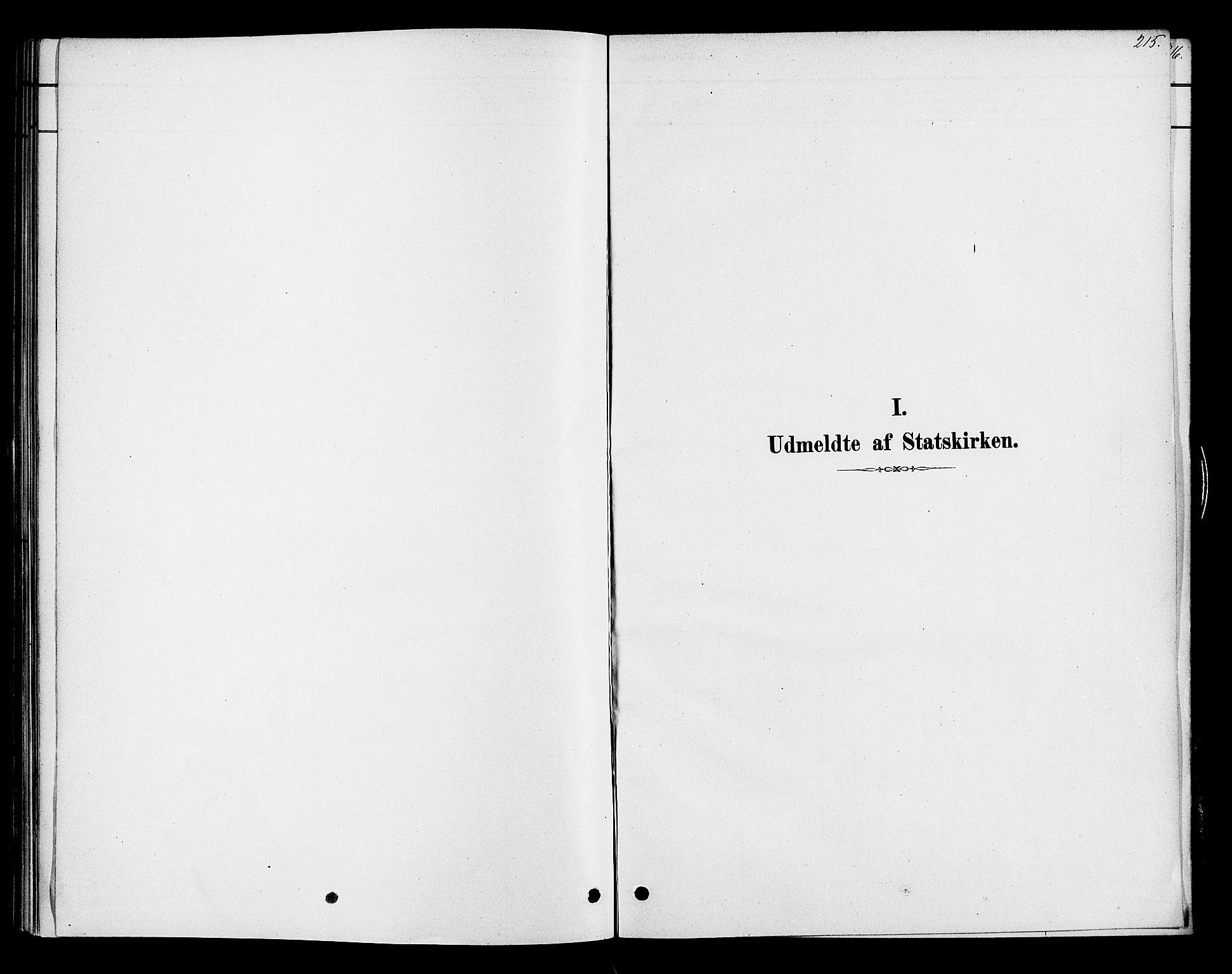SAH, Ringsaker prestekontor, K/Ka/L0013: Ministerialbok nr. 13, 1879-1890, s. 215