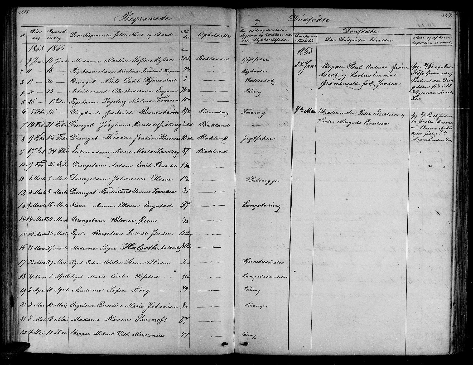 SAT, Ministerialprotokoller, klokkerbøker og fødselsregistre - Sør-Trøndelag, 604/L0219: Klokkerbok nr. 604C02, 1851-1869, s. 358-359