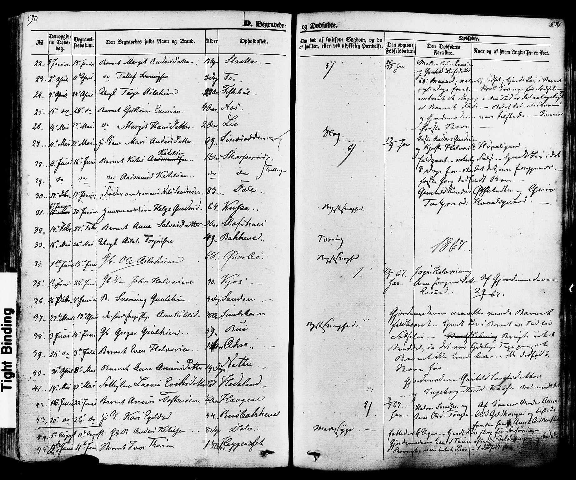 SAKO, Seljord kirkebøker, F/Fa/L0013: Ministerialbok nr. I 13, 1866-1876, s. 590-591