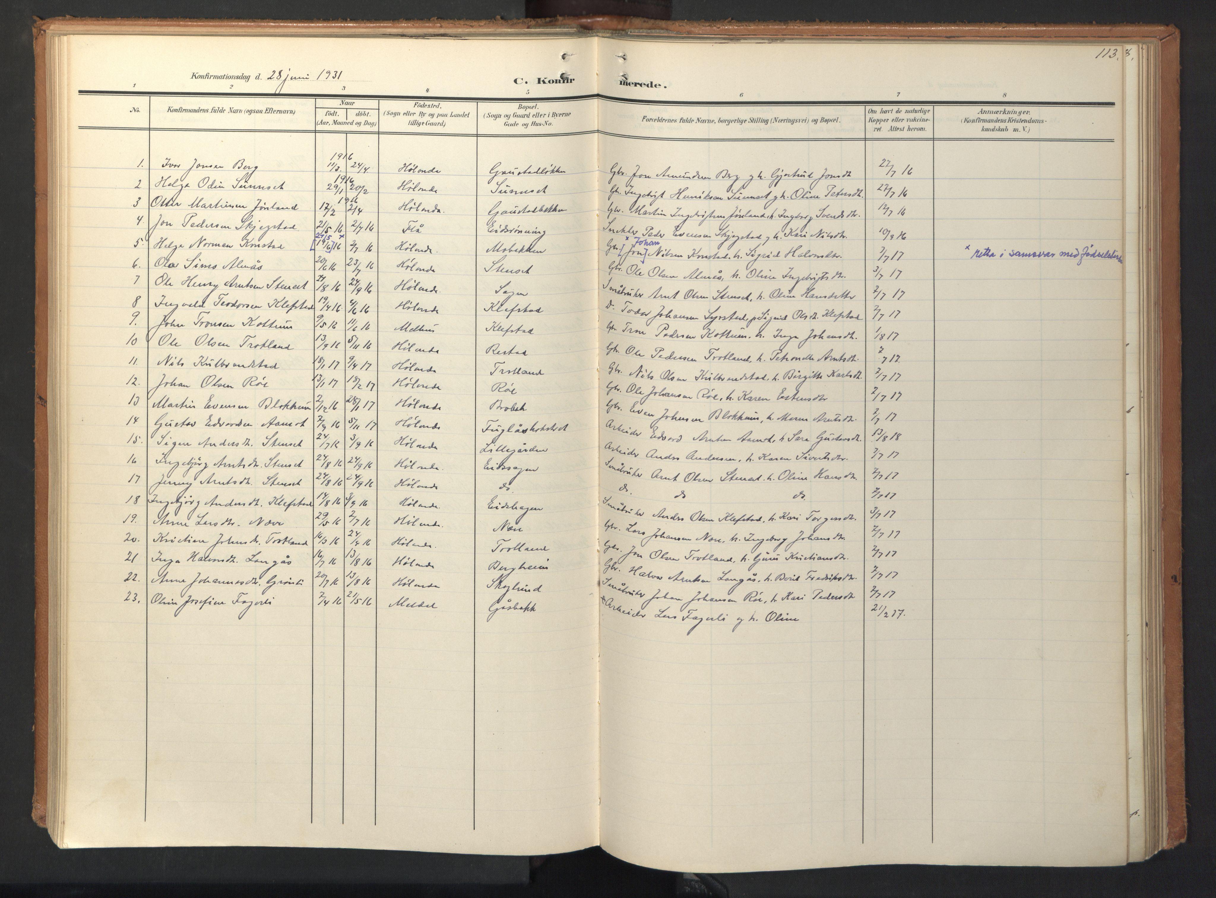 SAT, Ministerialprotokoller, klokkerbøker og fødselsregistre - Sør-Trøndelag, 694/L1128: Ministerialbok nr. 694A02, 1906-1931, s. 113