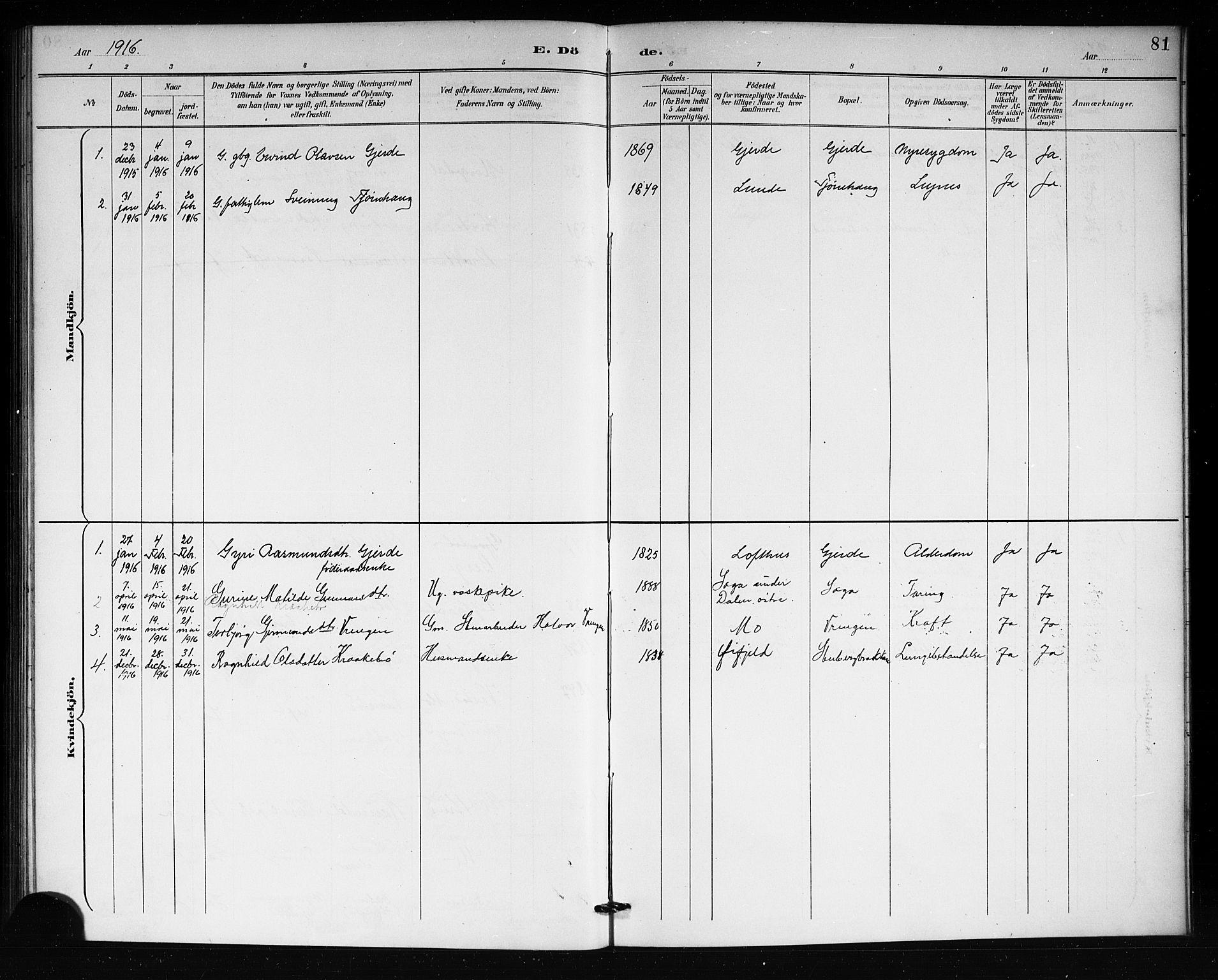 SAKO, Lårdal kirkebøker, G/Gb/L0003: Klokkerbok nr. II 3, 1889-1920, s. 81