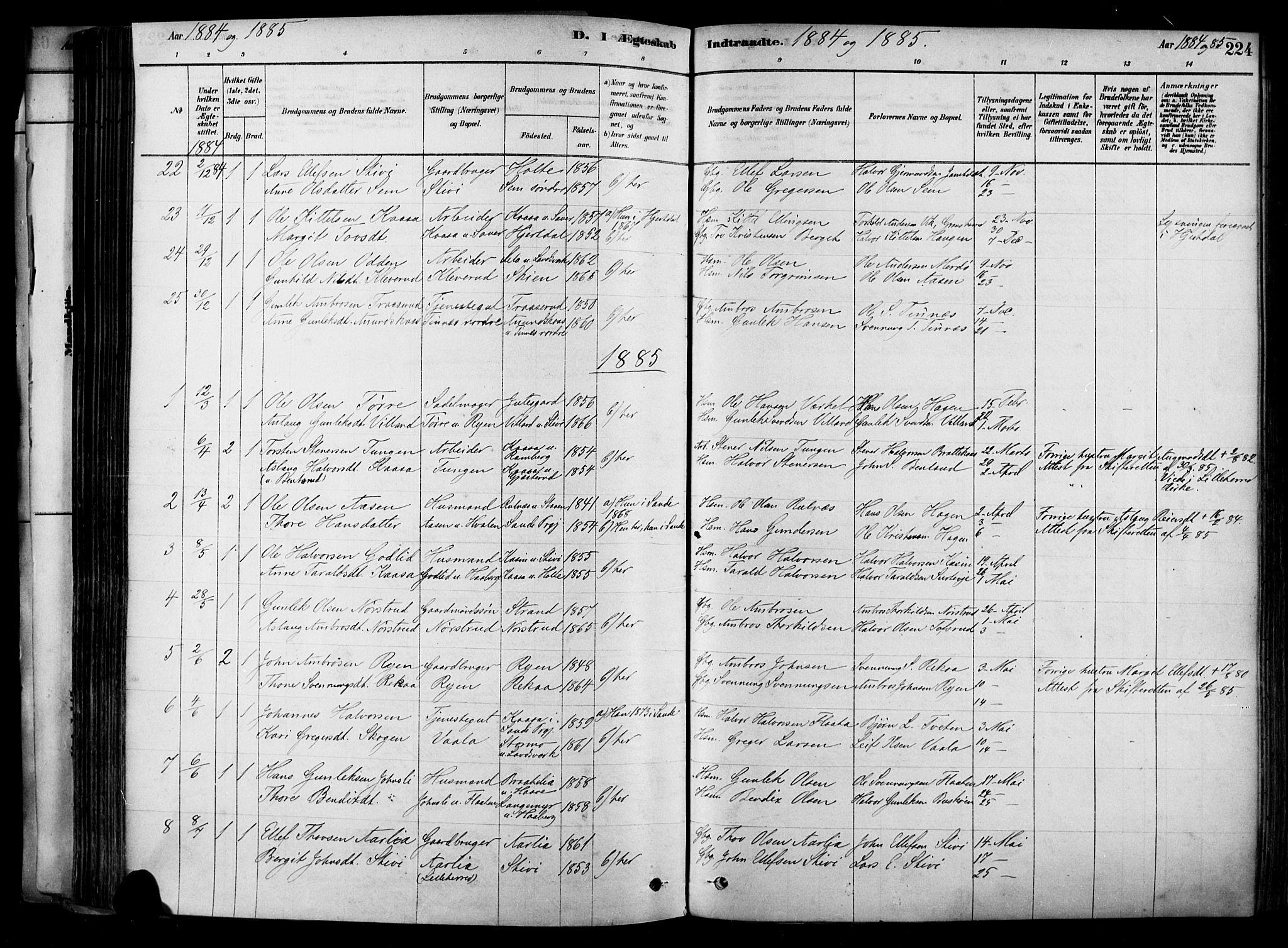 SAKO, Heddal kirkebøker, F/Fa/L0008: Ministerialbok nr. I 8, 1878-1903, s. 224