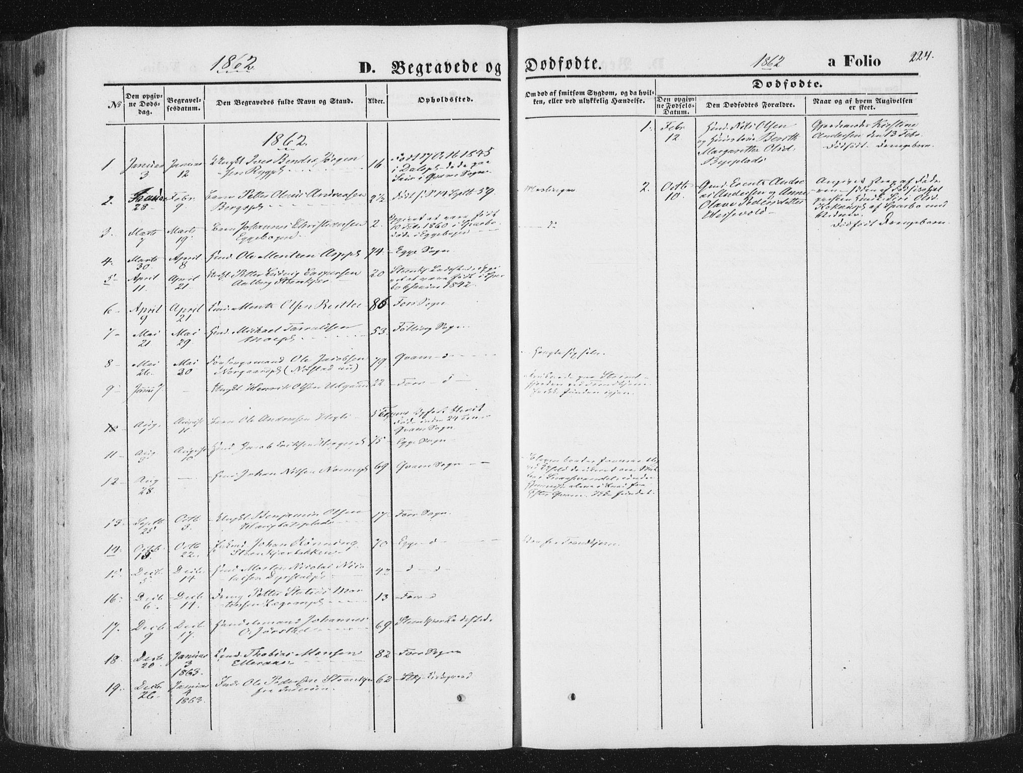 SAT, Ministerialprotokoller, klokkerbøker og fødselsregistre - Nord-Trøndelag, 746/L0447: Ministerialbok nr. 746A06, 1860-1877, s. 224