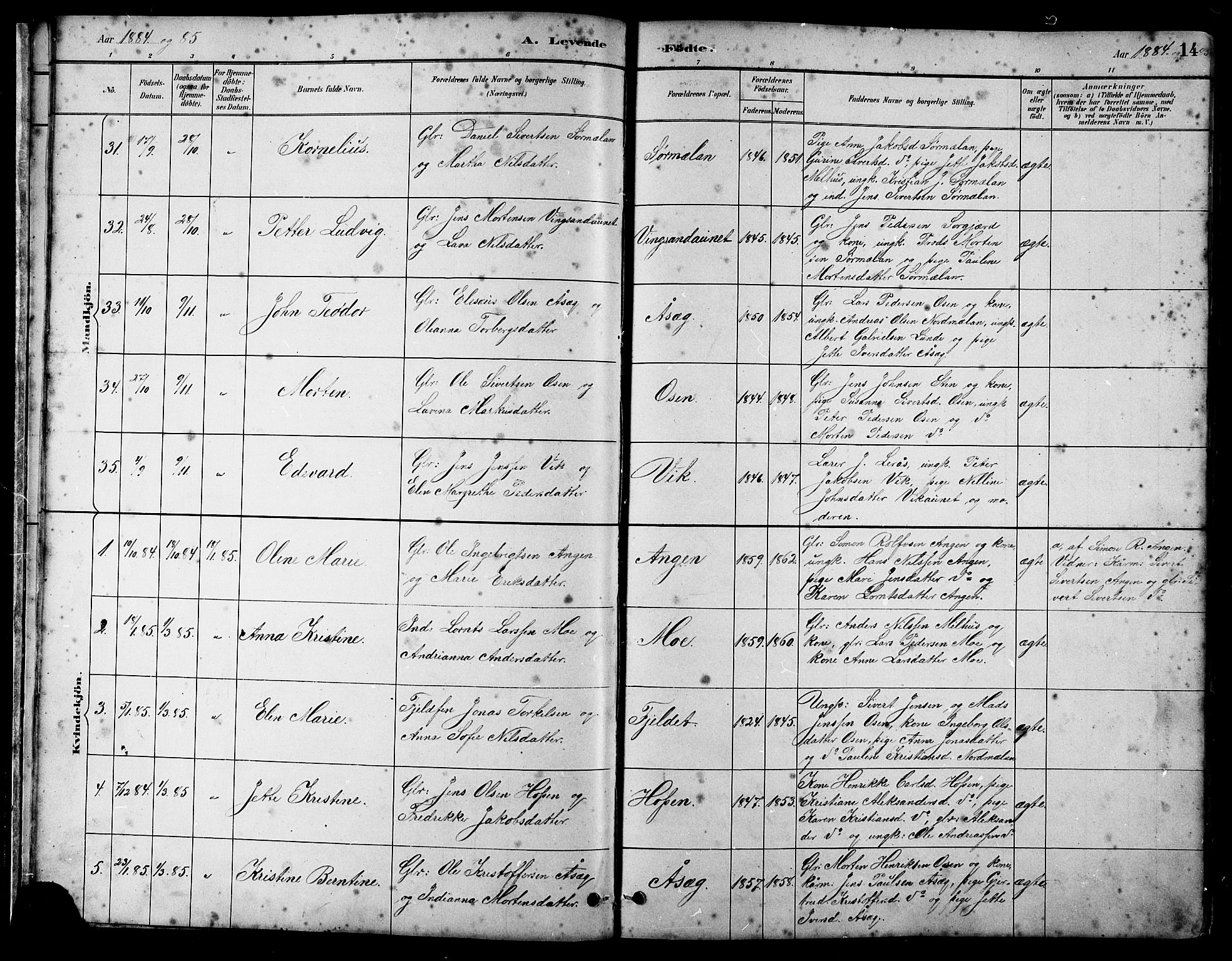 SAT, Ministerialprotokoller, klokkerbøker og fødselsregistre - Sør-Trøndelag, 658/L0726: Klokkerbok nr. 658C02, 1883-1908, s. 14