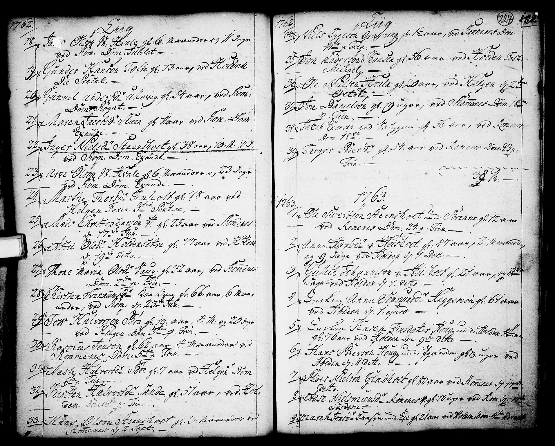 SAKO, Holla kirkebøker, F/Fa/L0001: Ministerialbok nr. 1, 1717-1779, s. 227